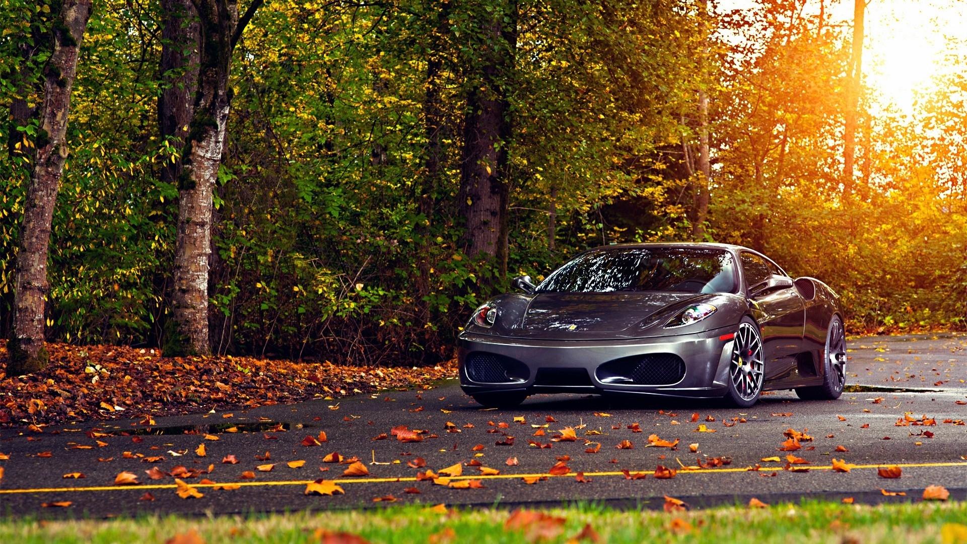 Ferrari F430 Autumn, HD Cartoons, 4k Wallpapers, Images