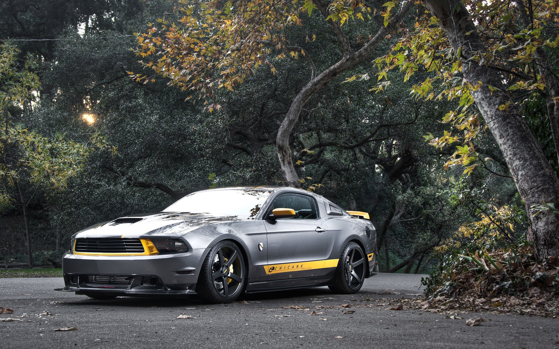 2560x1440 Ford Mustang Custom 1440p Resolution Hd 4k Wallpapers