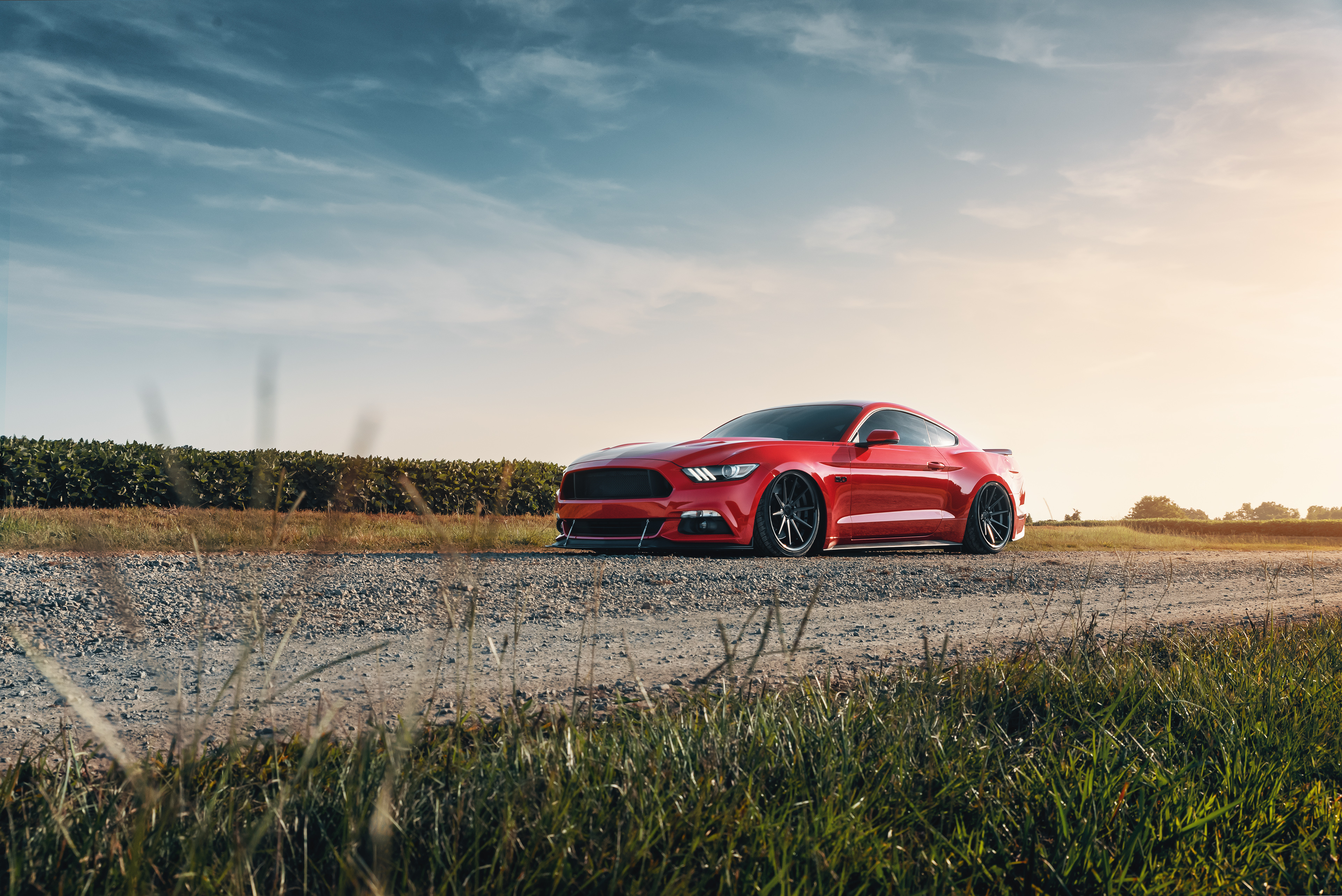 Ford Mustang GT Red, HD Cars, 4k Wallpapers, Images ...