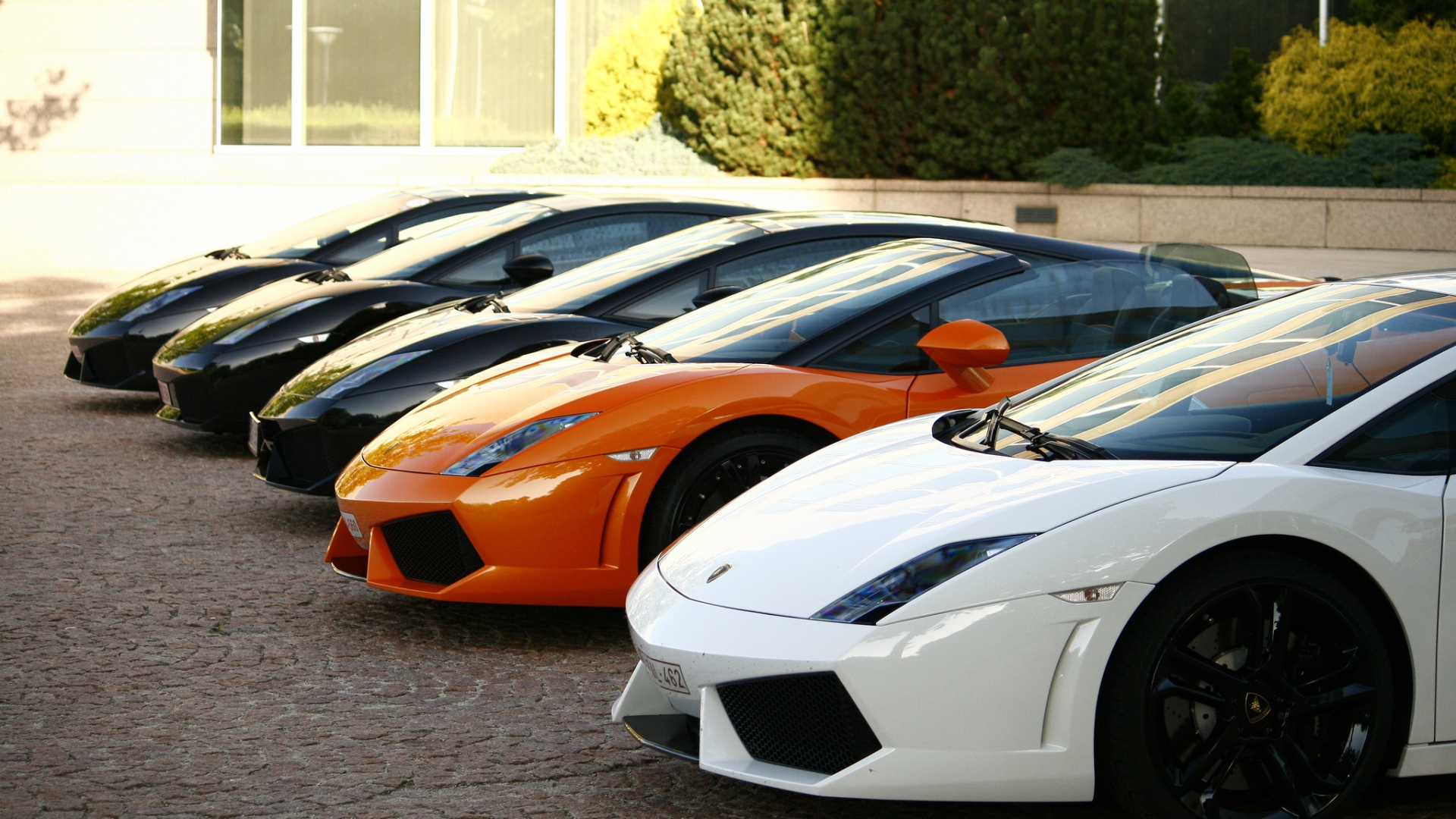 Gallardo HD Cars 4k Wallpapers Images Backgrounds Photos And