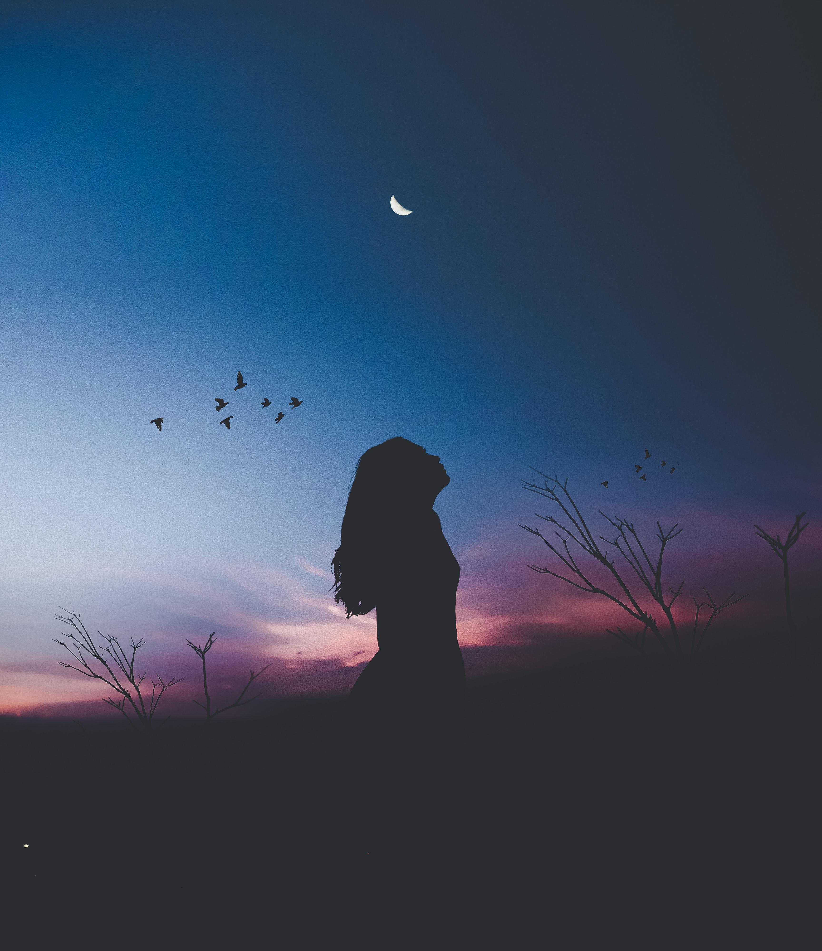 Girl Silhouette Shadow Birds Flying, HD Photography, 4k