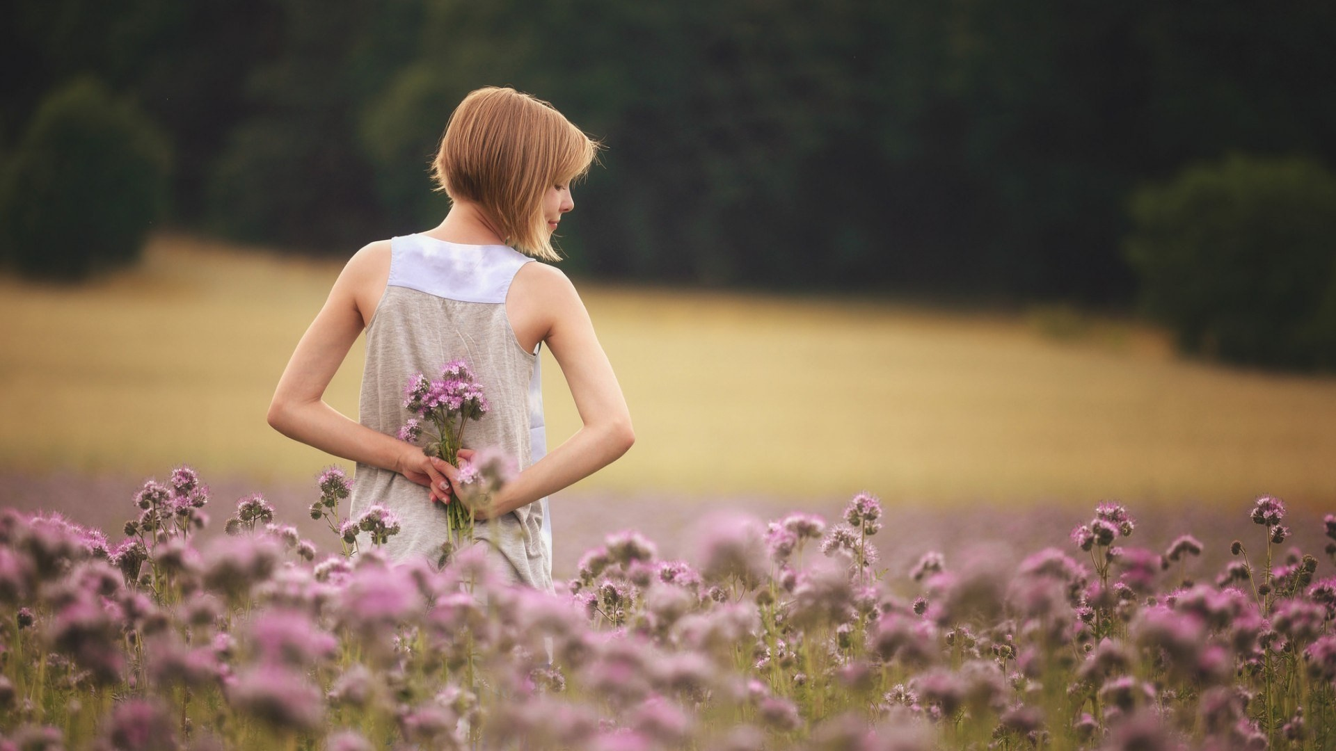 girl with flowers standing in field, hd girls, 4k wallpapers, images