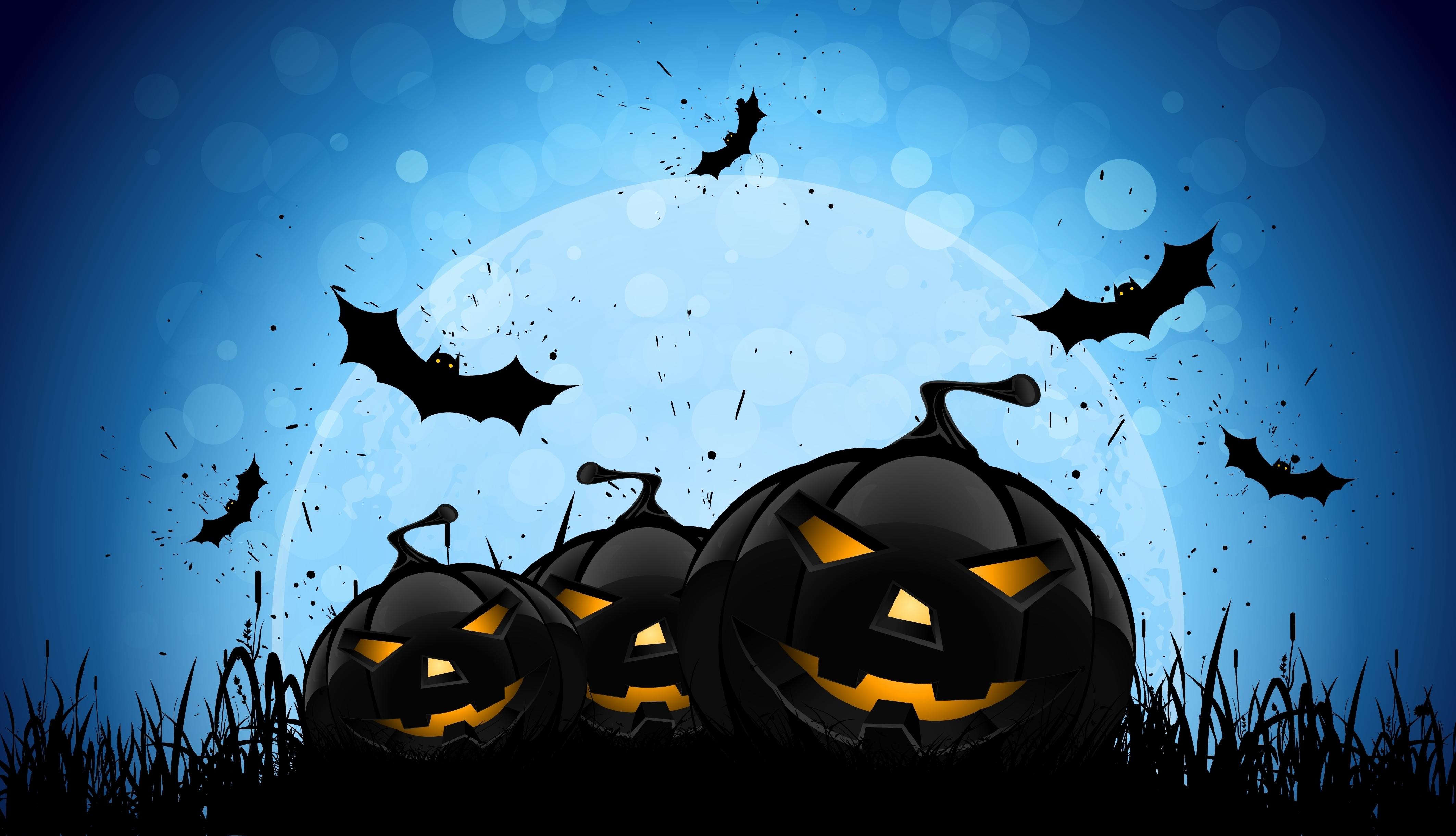 Halloween Bat 4k, HD Celebrations, 4k Wallpapers, Images ...