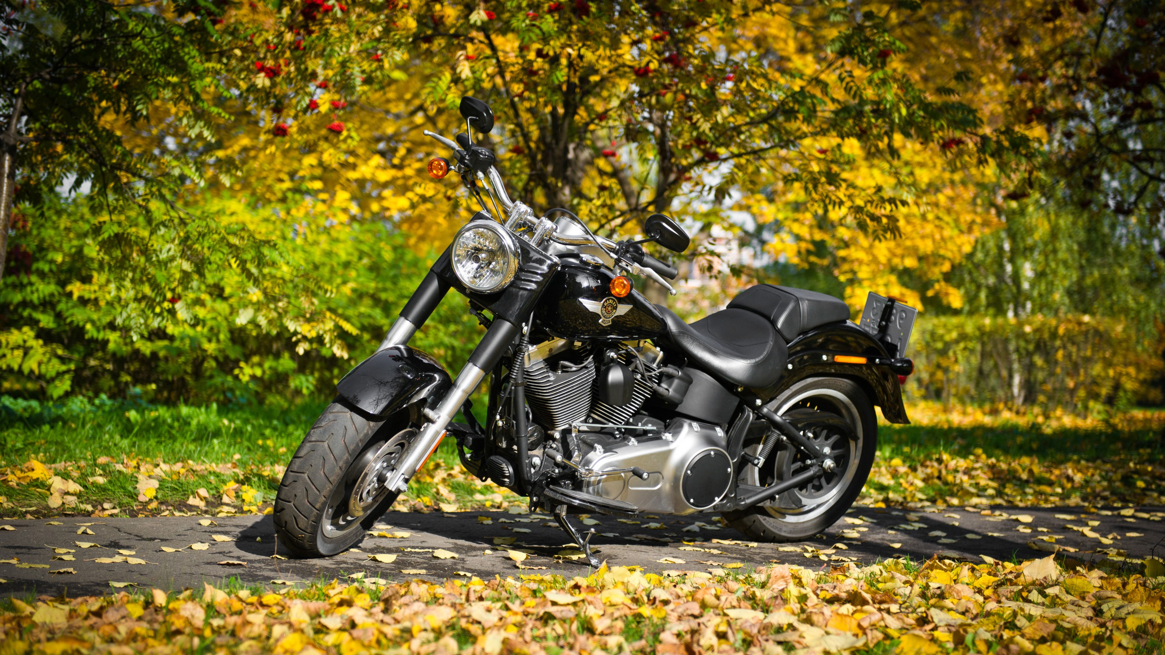 Background Images For Editing Hd Bike: Harley Davidson Motorcycle 2, HD Bikes, 4k Wallpapers