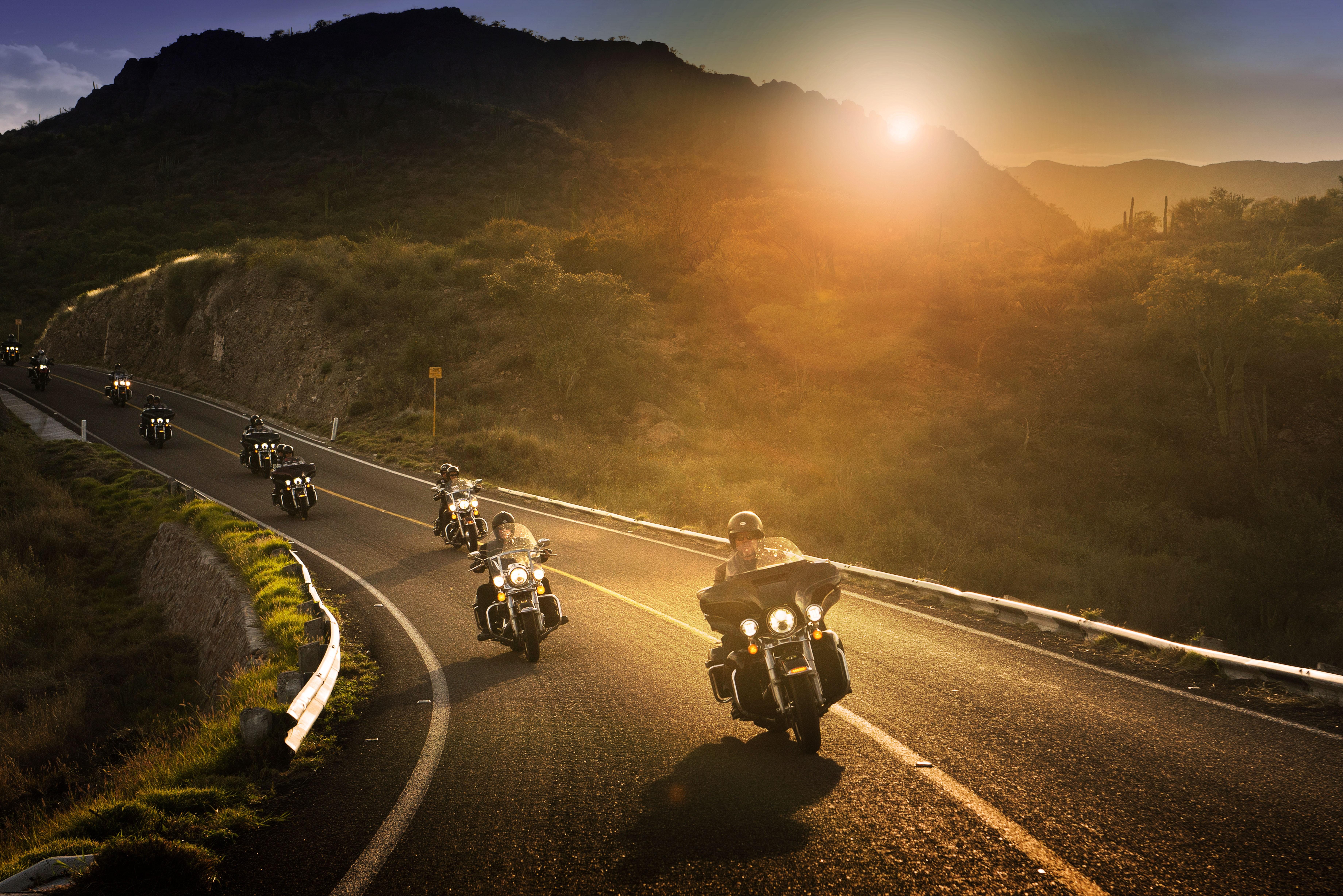 Harley Davidson Riders 8k, HD Bikes, 4k Wallpapers, Images