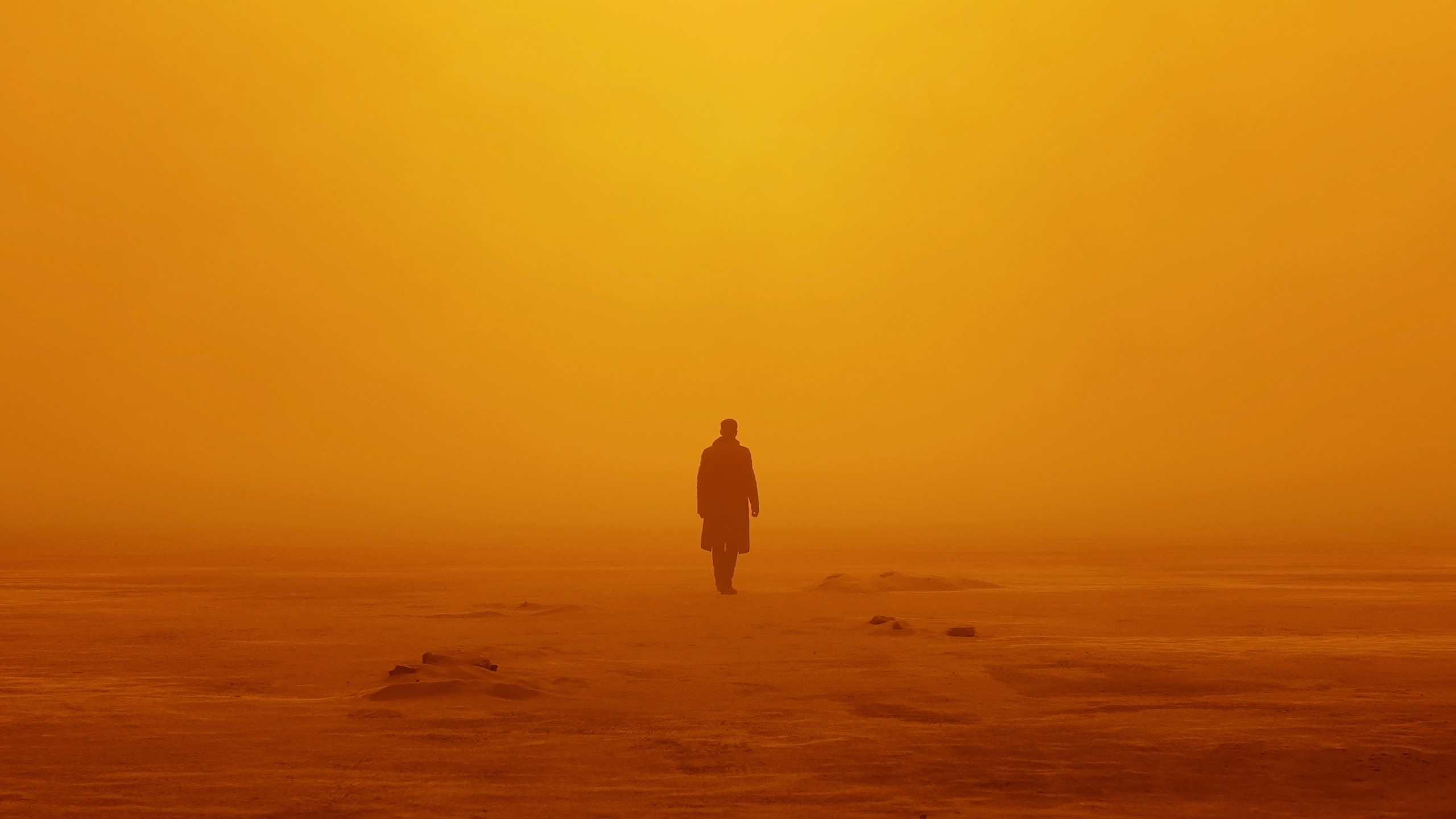 Hd Blade Runner 2049, HD Movies, 4k Wallpapers, Images