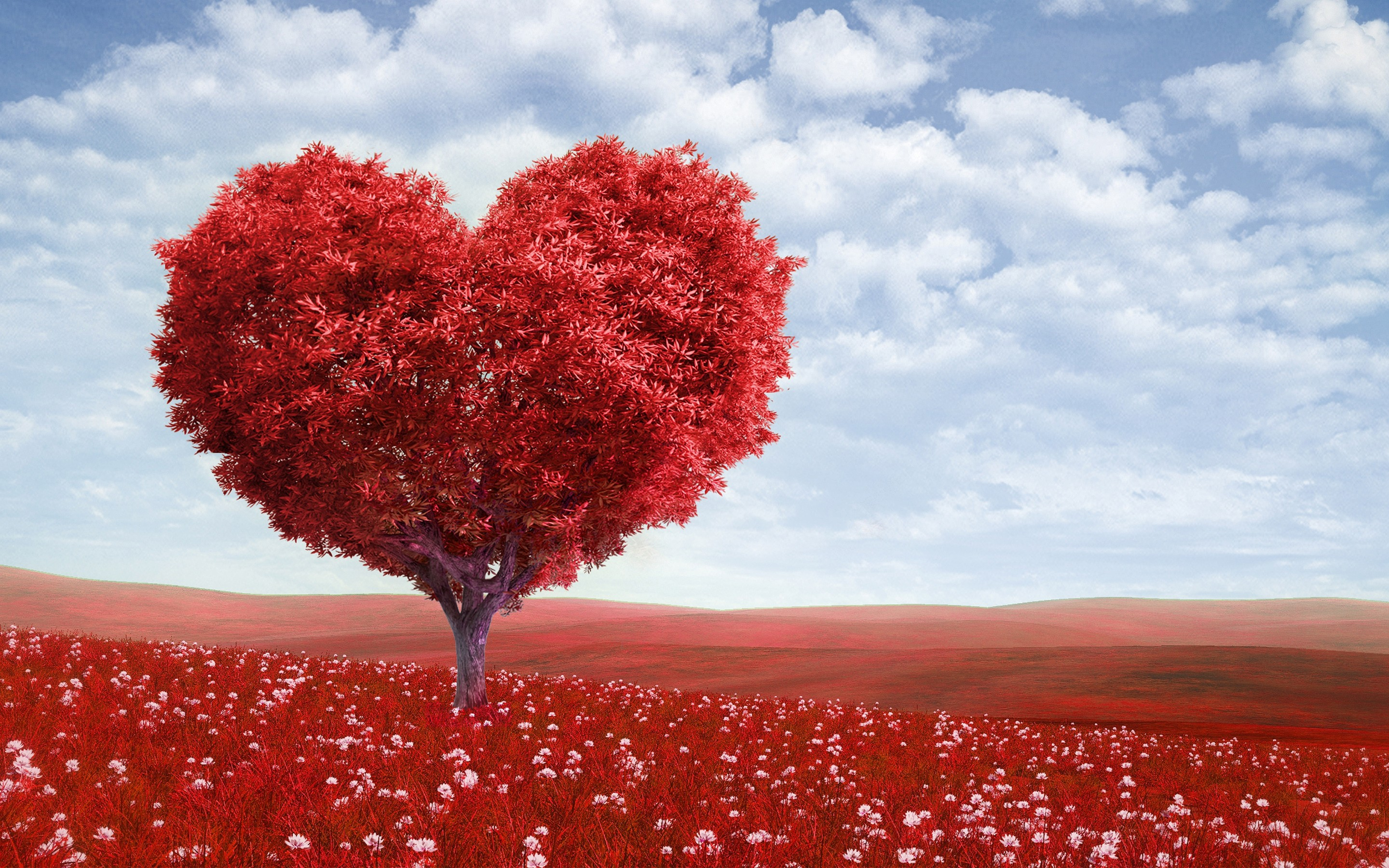 Heart Tree, HD Love, 4k Wallpapers, Images, Backgrounds, Photos and Pictures