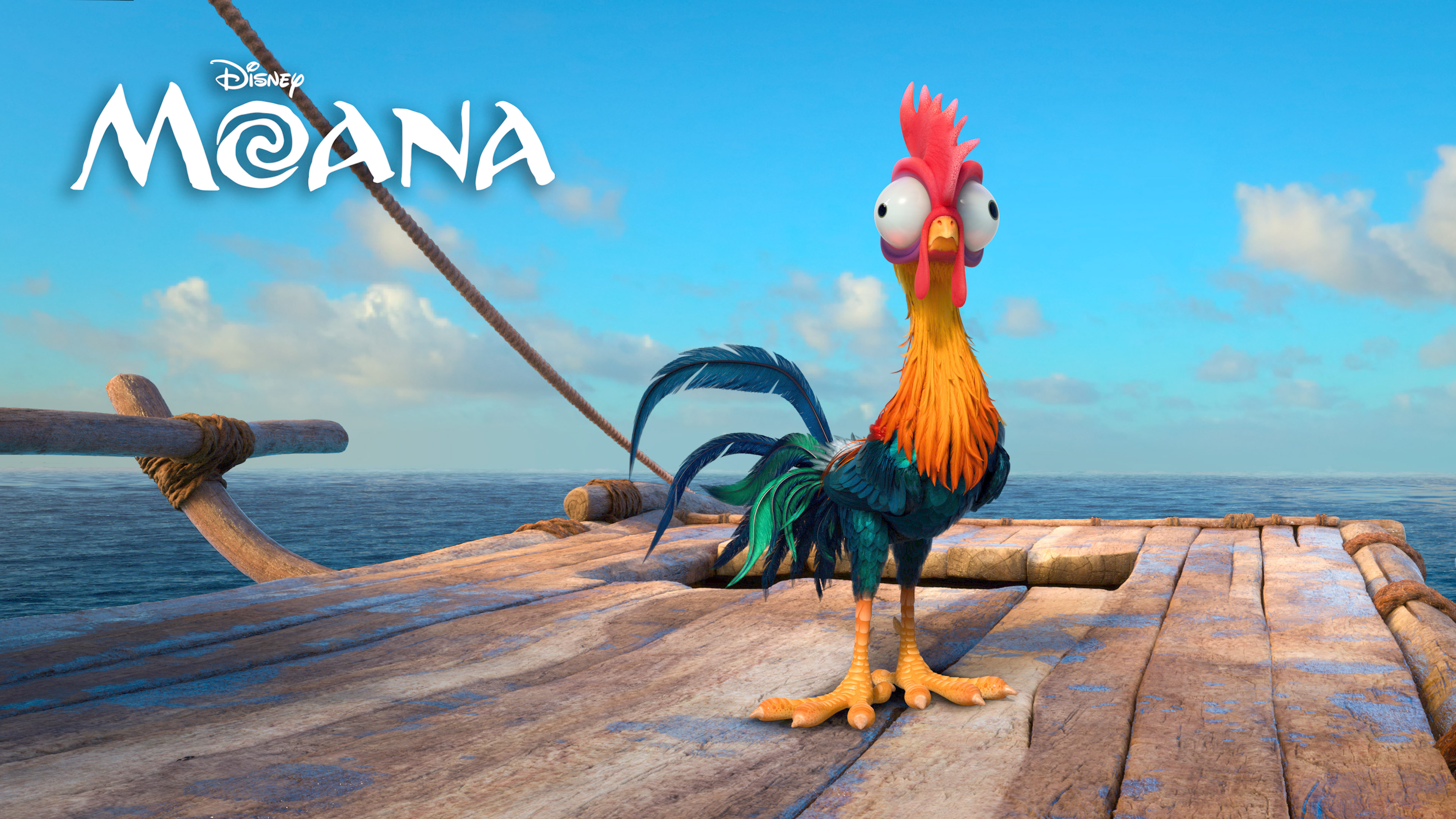 http://hdqwalls.com/wallpapers/heihei-moana-4k-do.jpg