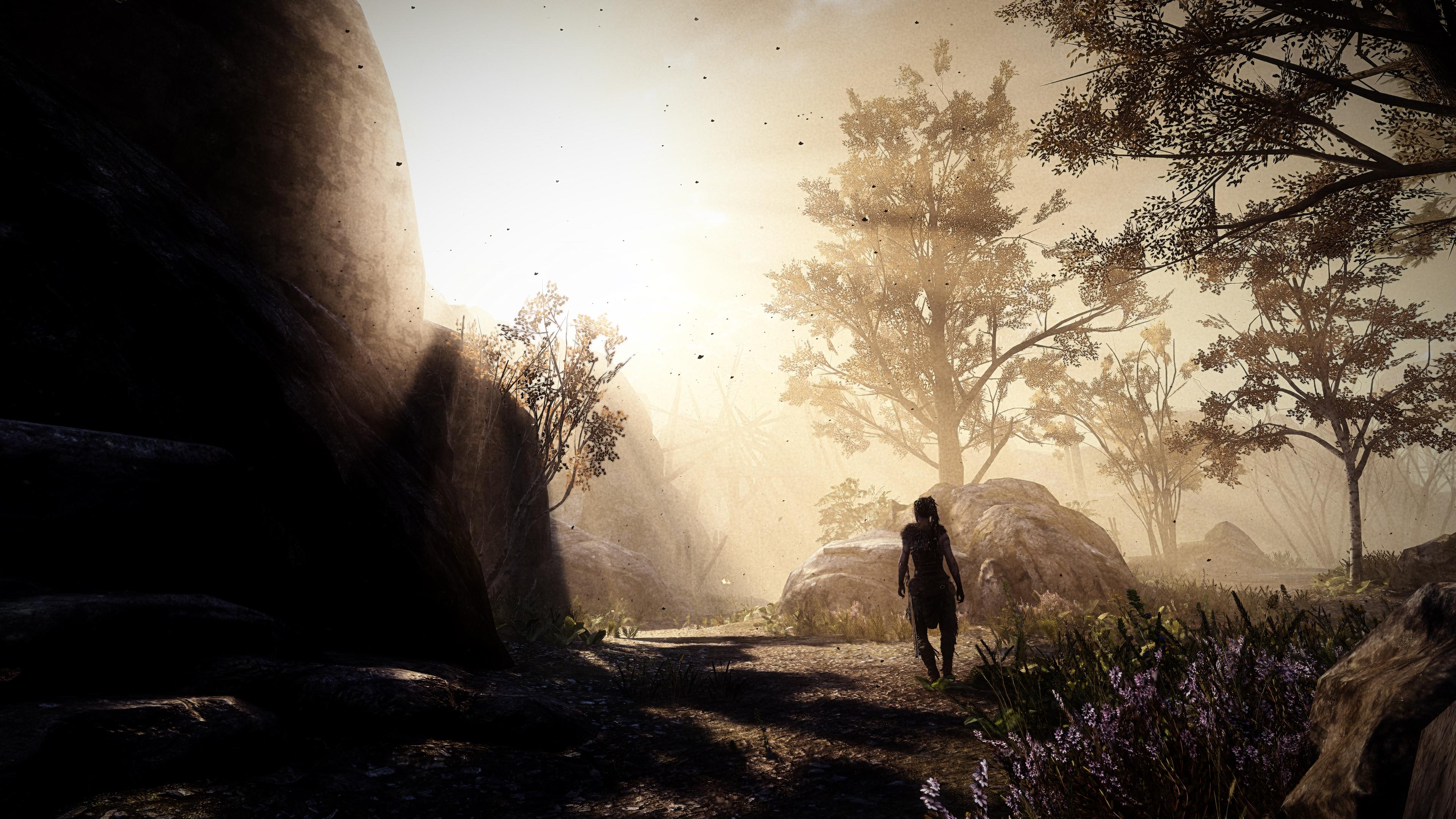 Hellblade Senuas Sacrifice Game 2019 4k Hd Games 4k