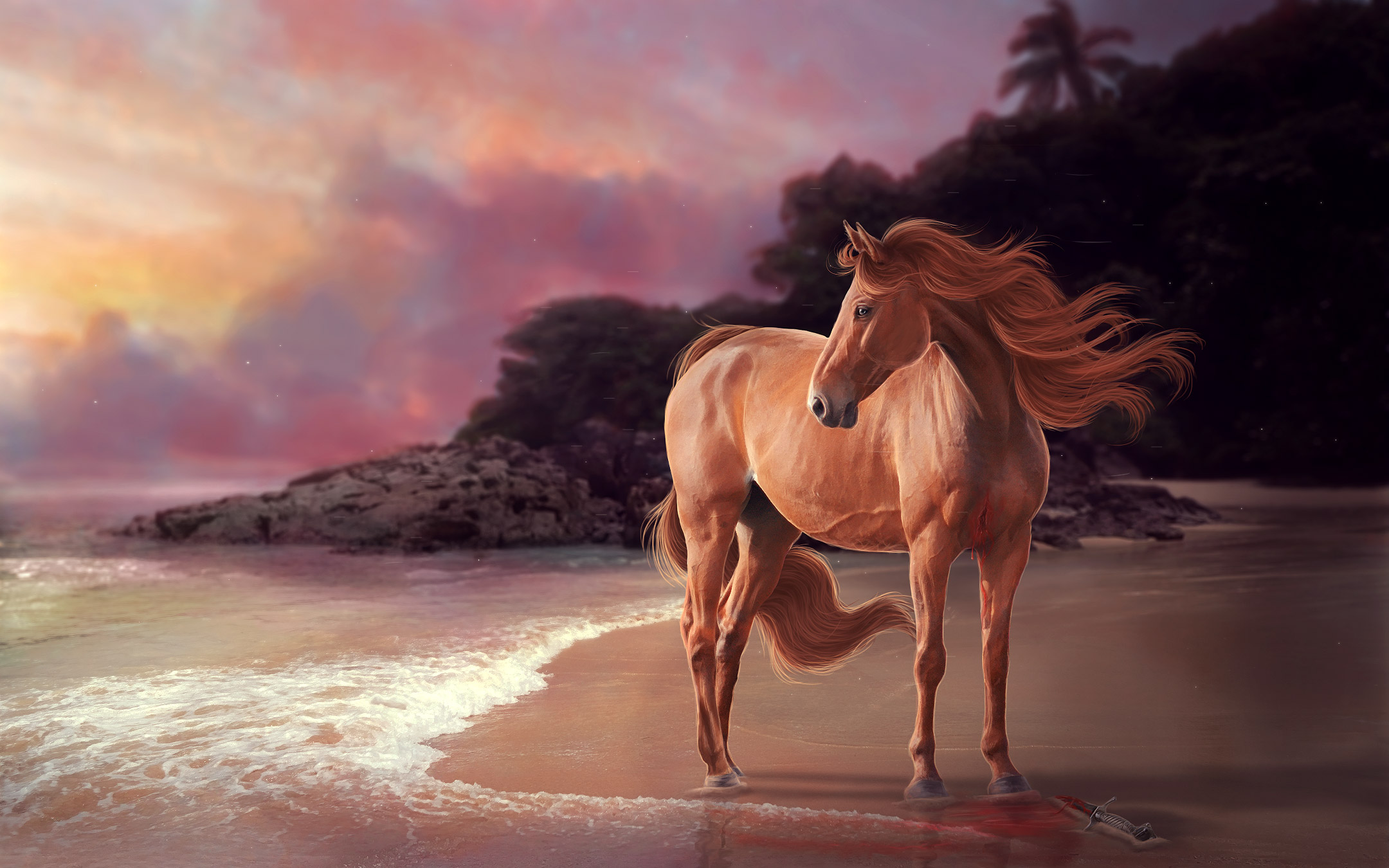 Horse on beach artwork hd animals 4k wallpapers images for Window horses