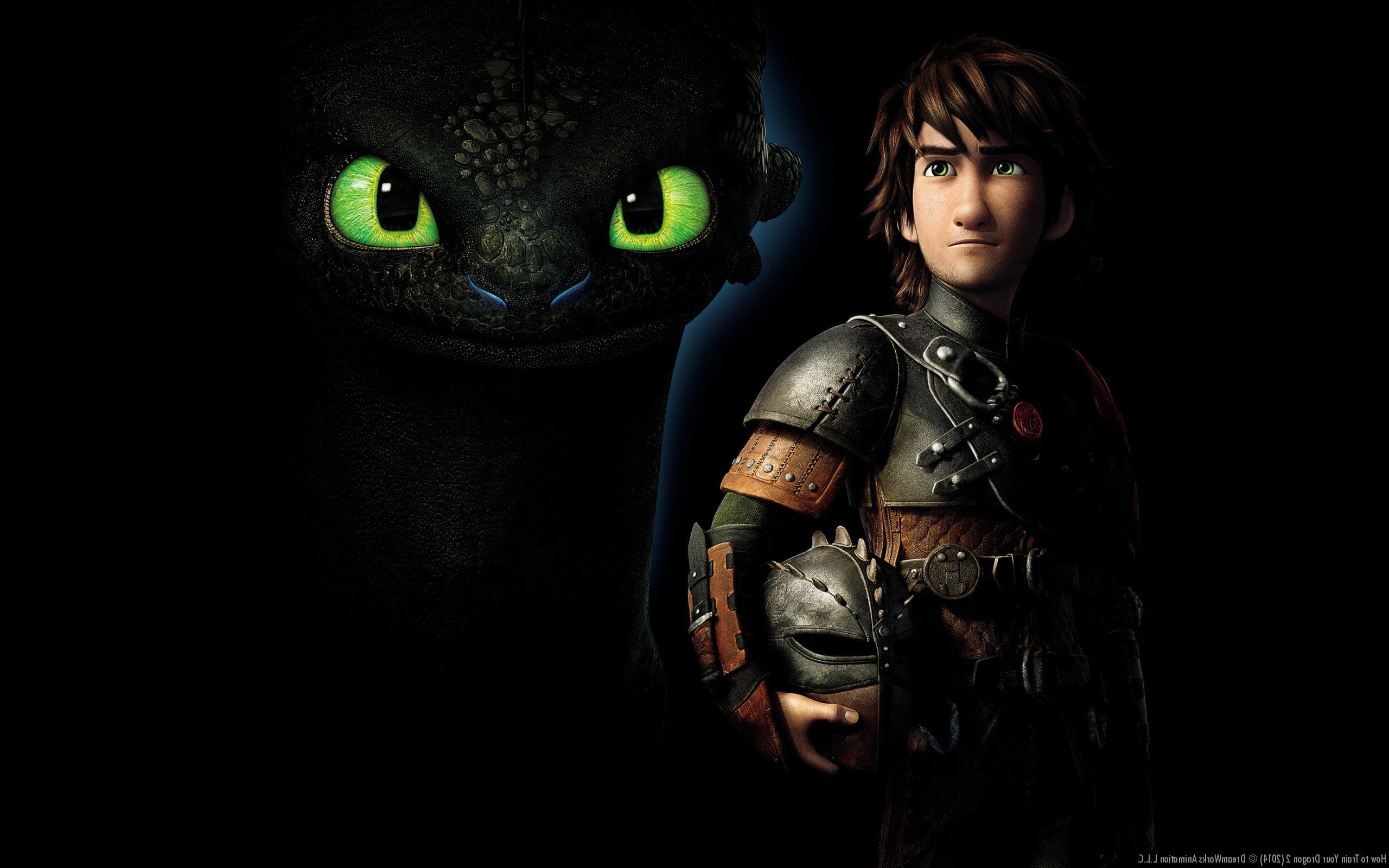 how to to train your dragon