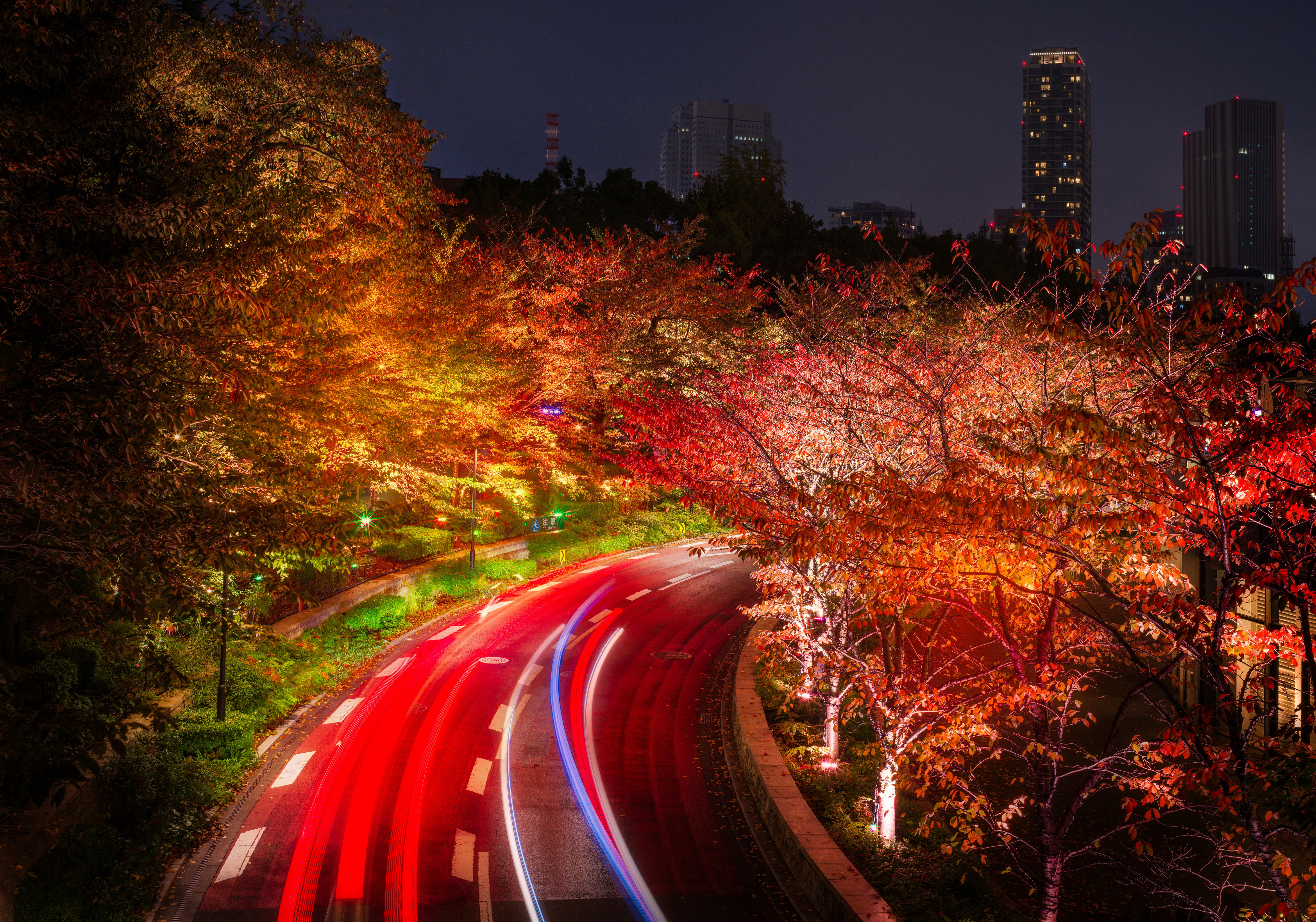Japan tokyo roads autumn trees night hd nature 4k wallpapers images backgrounds photos and - Tokyo japan wallpaper ...