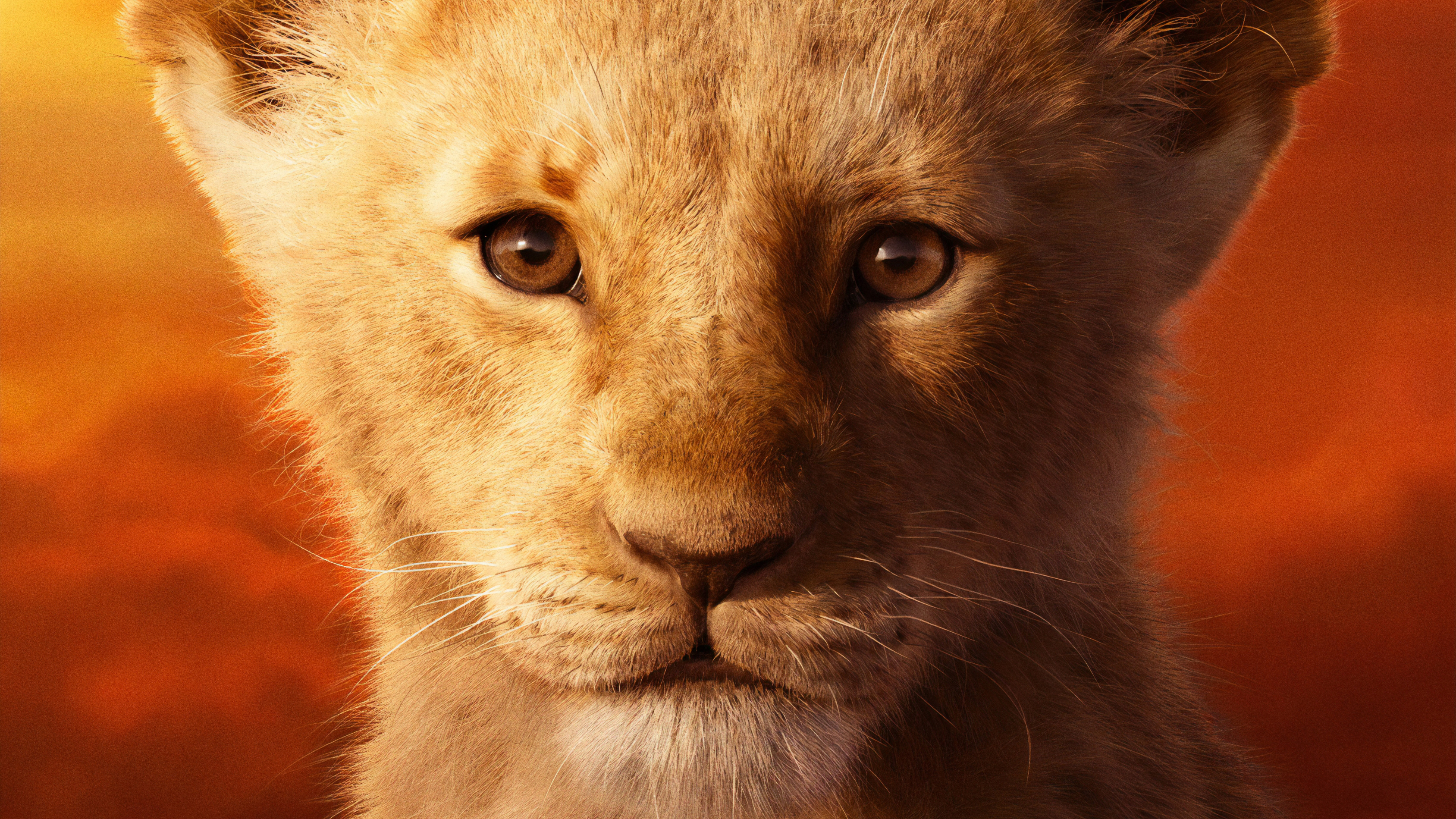 Jd Mccrary As Simba The Lion King 2019 4k Hd Movies 4k