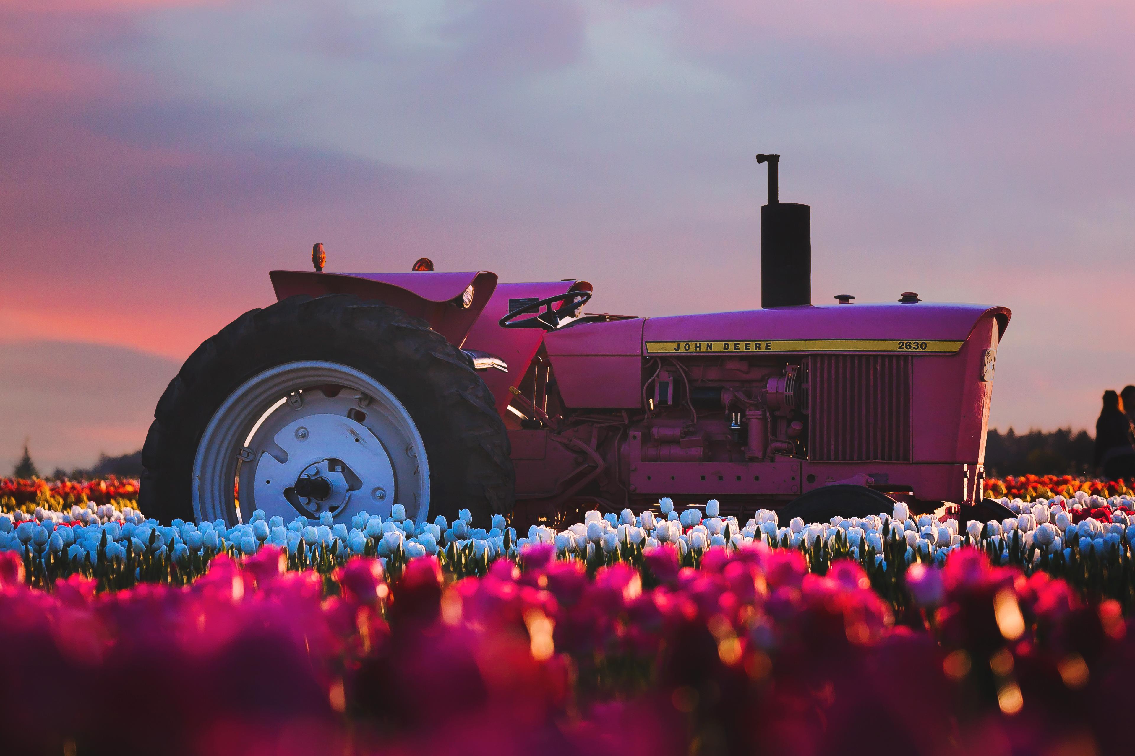 Hd Tractor Desktop Wallpapers: John Deere Tractor In Flower Farm 4k, HD Photography, 4k