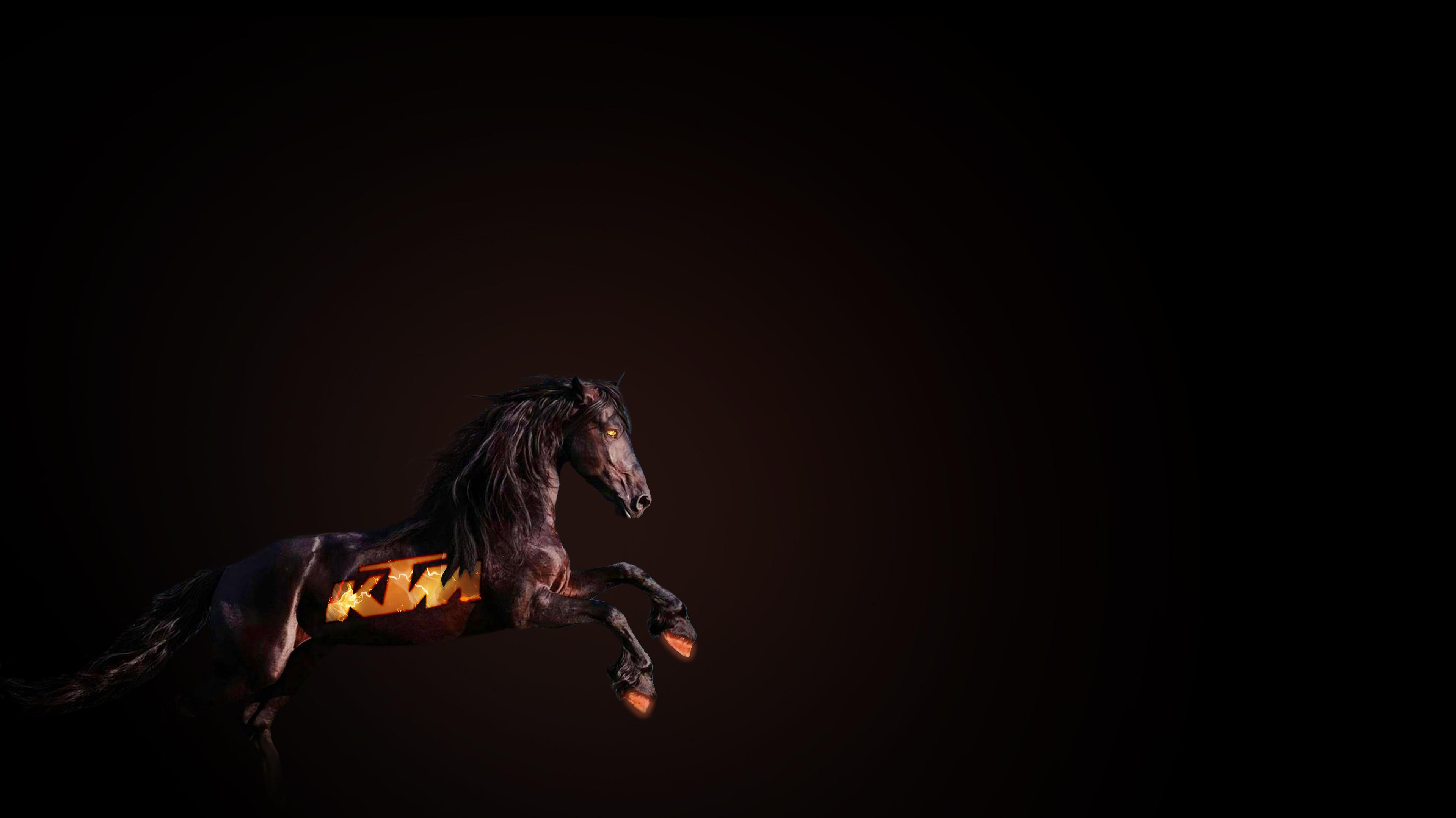 Ktm Horse