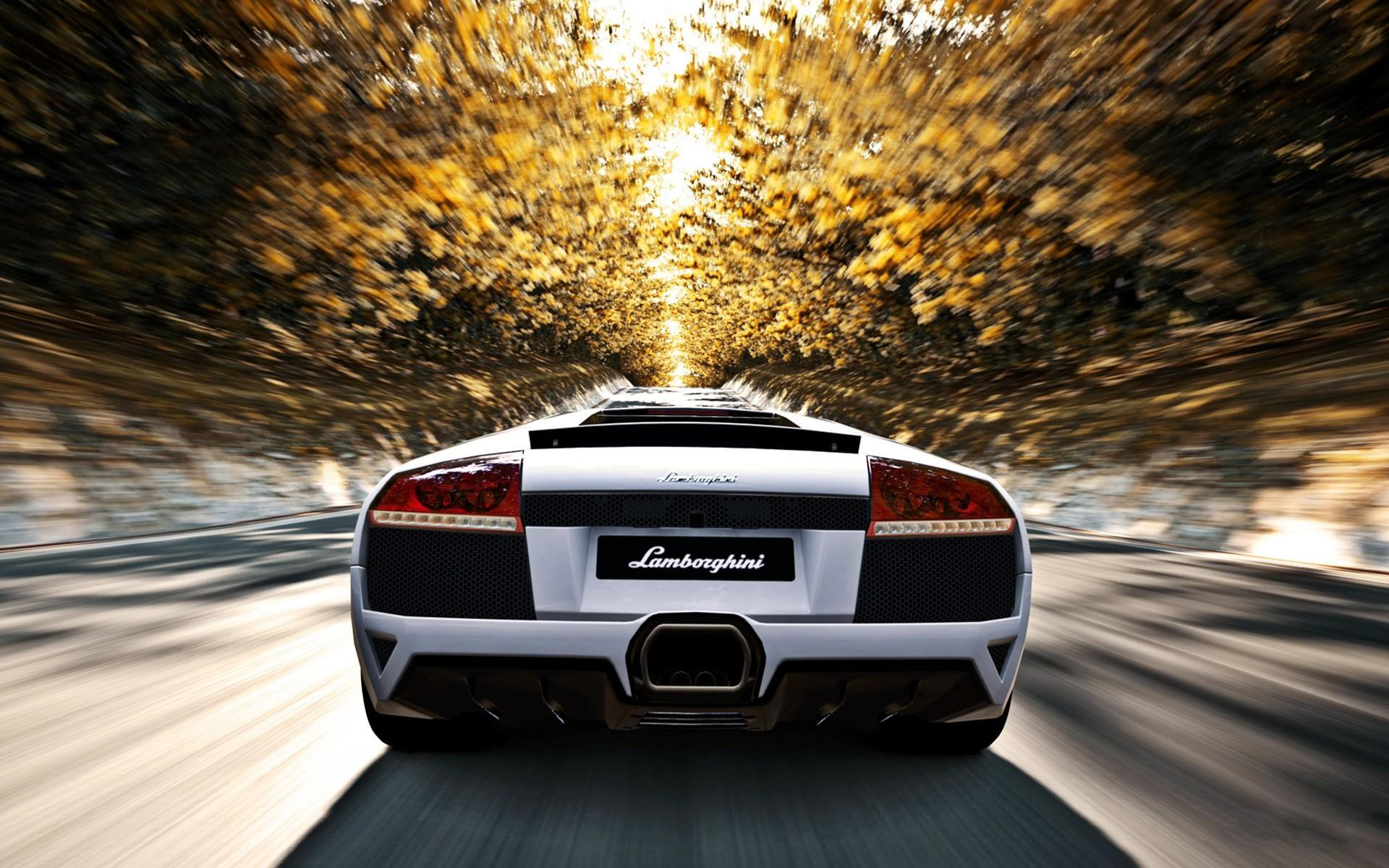 Lamborghini Murcielago LP SuperVeloce Wallpaper Gallery