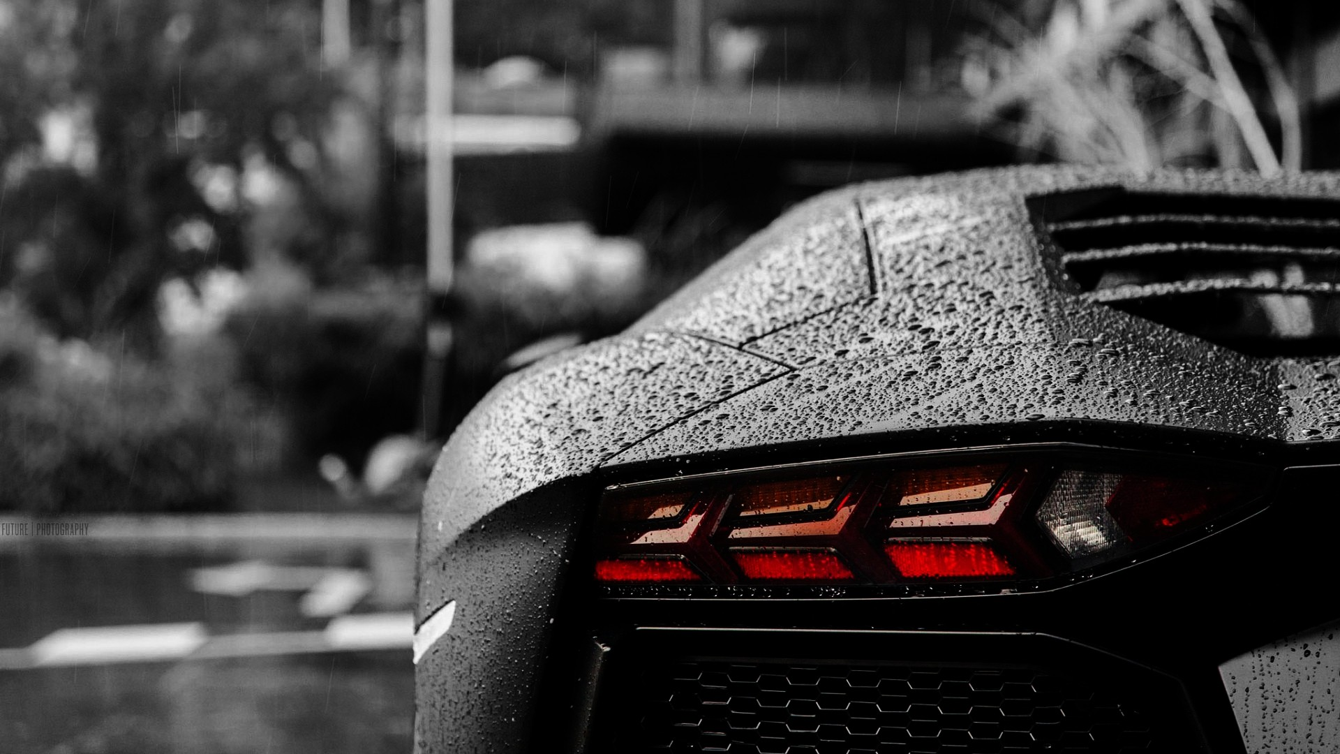 Lamborghini Tail Light