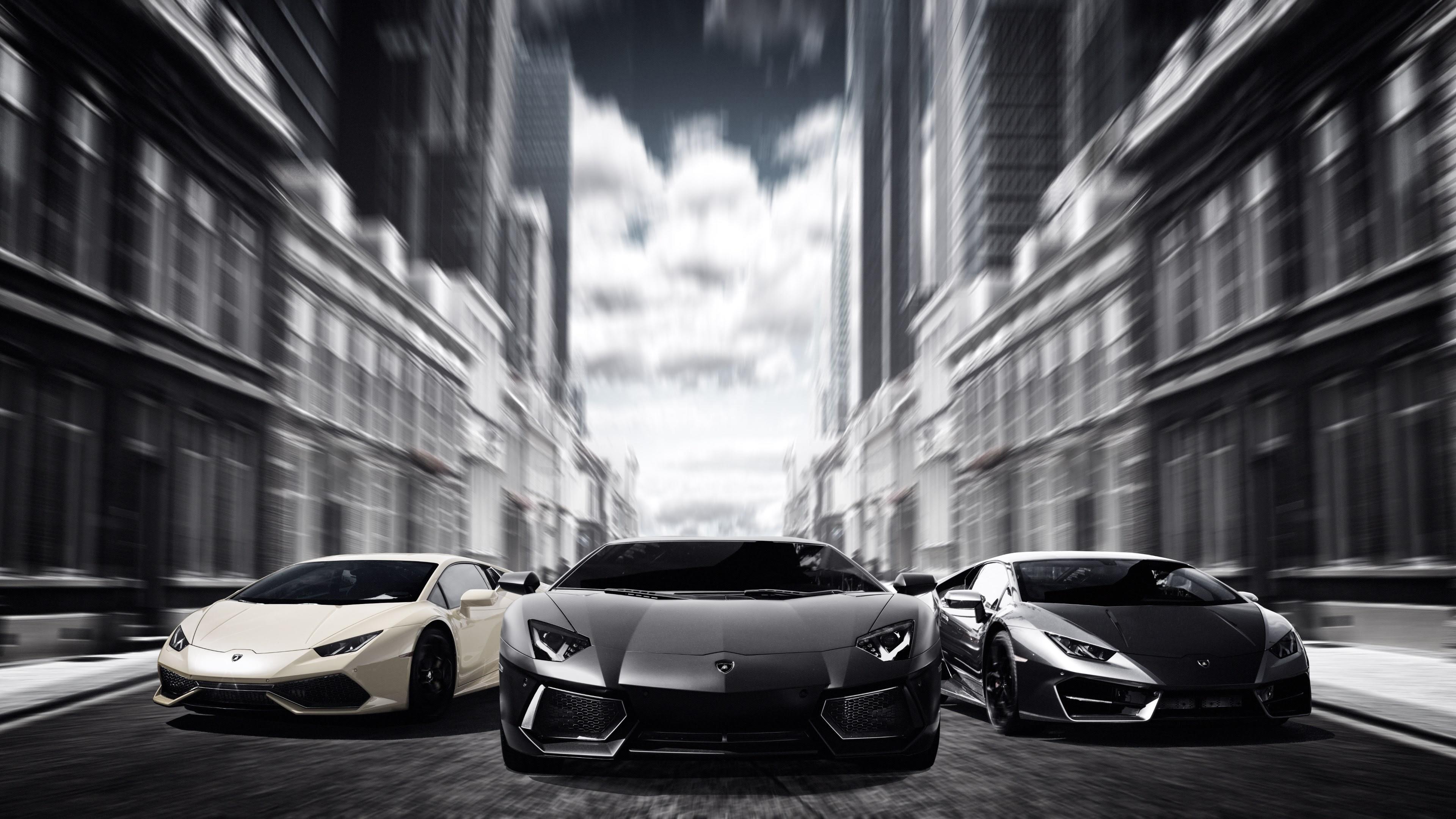 Lamborghinis Black And White 4k Hd Cars 4k Wallpapers Images
