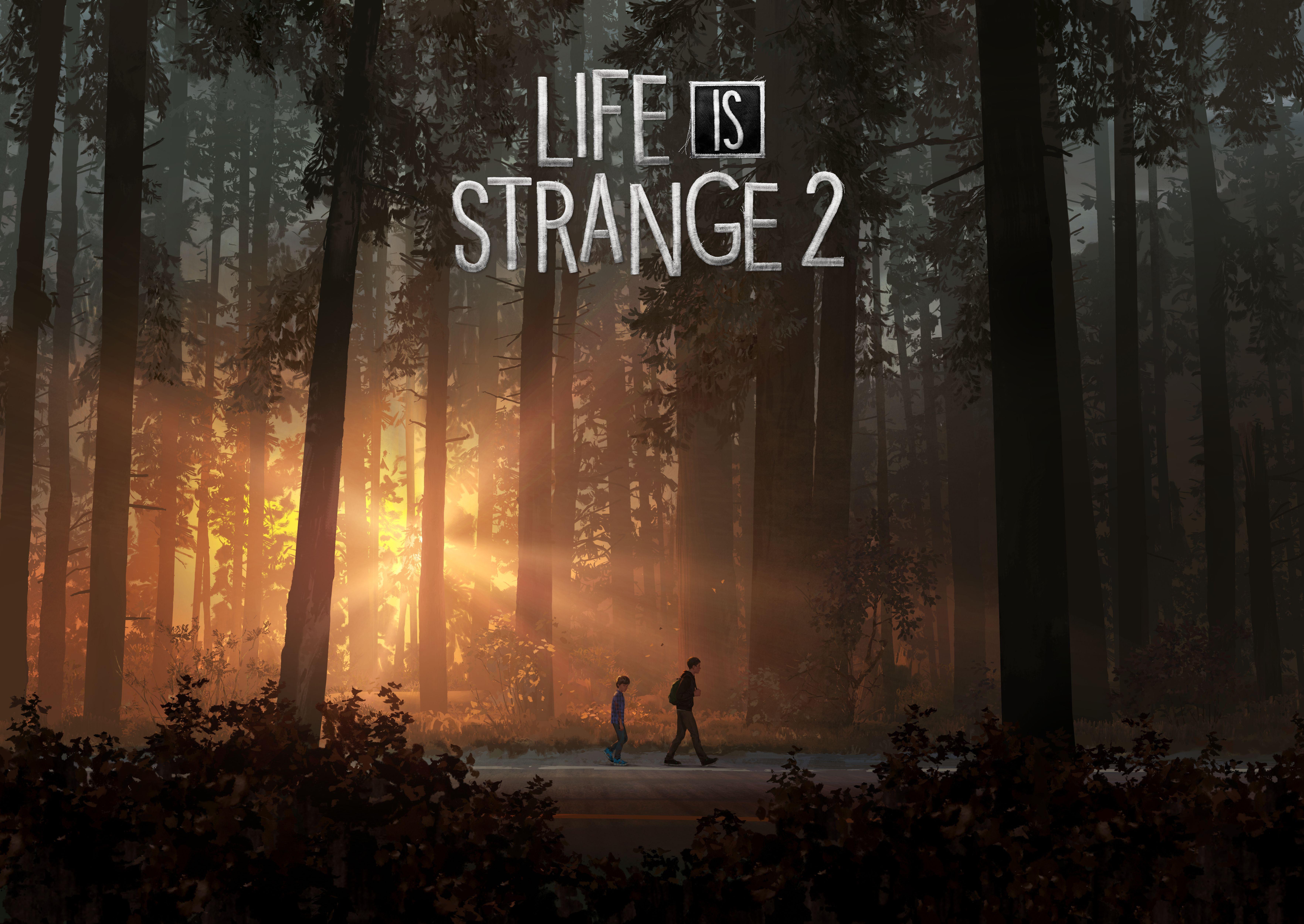 Life Is Strange 2 2018 8k, HD Games, 4k Wallpapers, Images ...