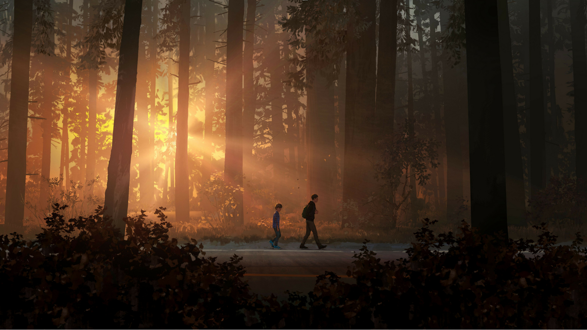 Life Is Strange 2, HD Games, 4k Wallpapers, Images