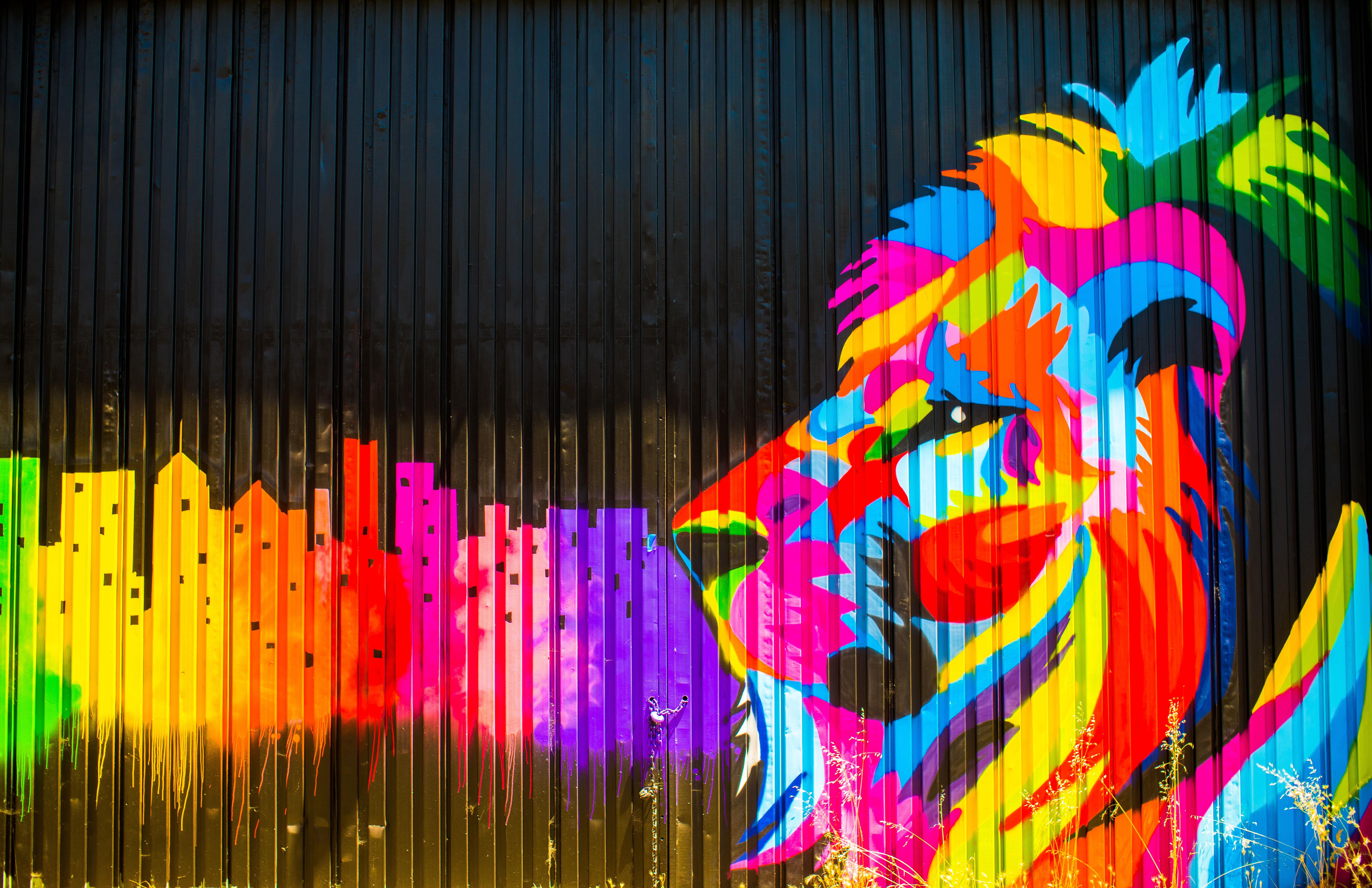 Lion graffiti 5k