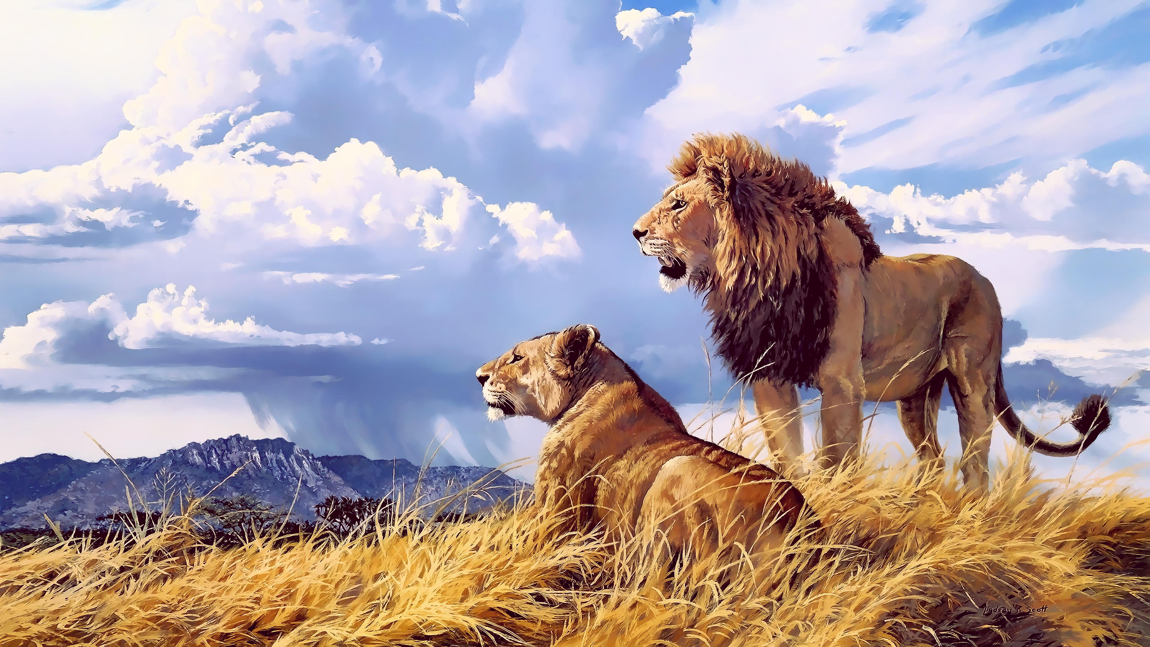 Lion Lioness Artwork 4k Hd Animals 4k Wallpapers Images