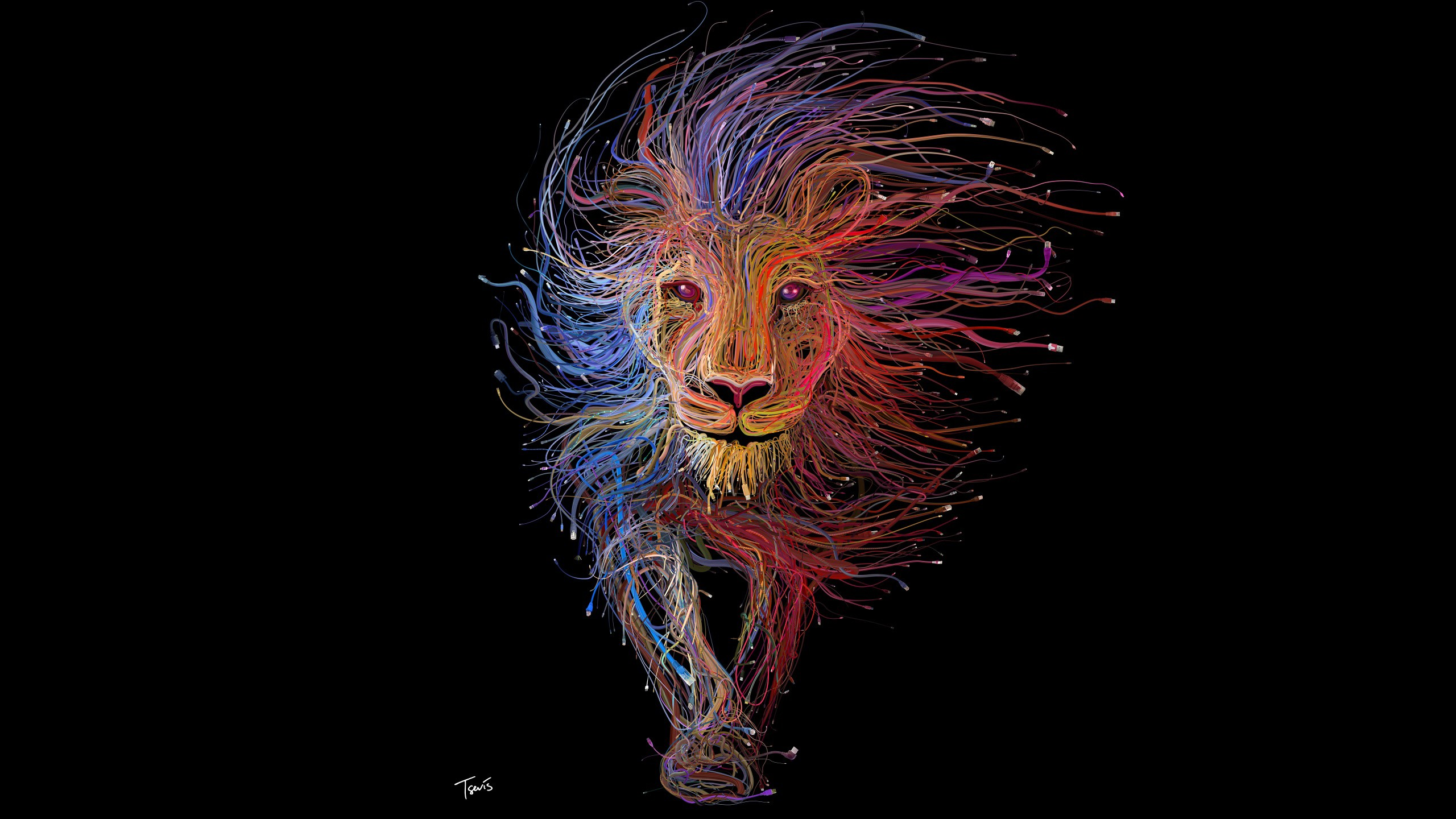 Amazing Wallpaper Logo Lion - lion-wires-art-wallpaper  Collection_784129.jpg