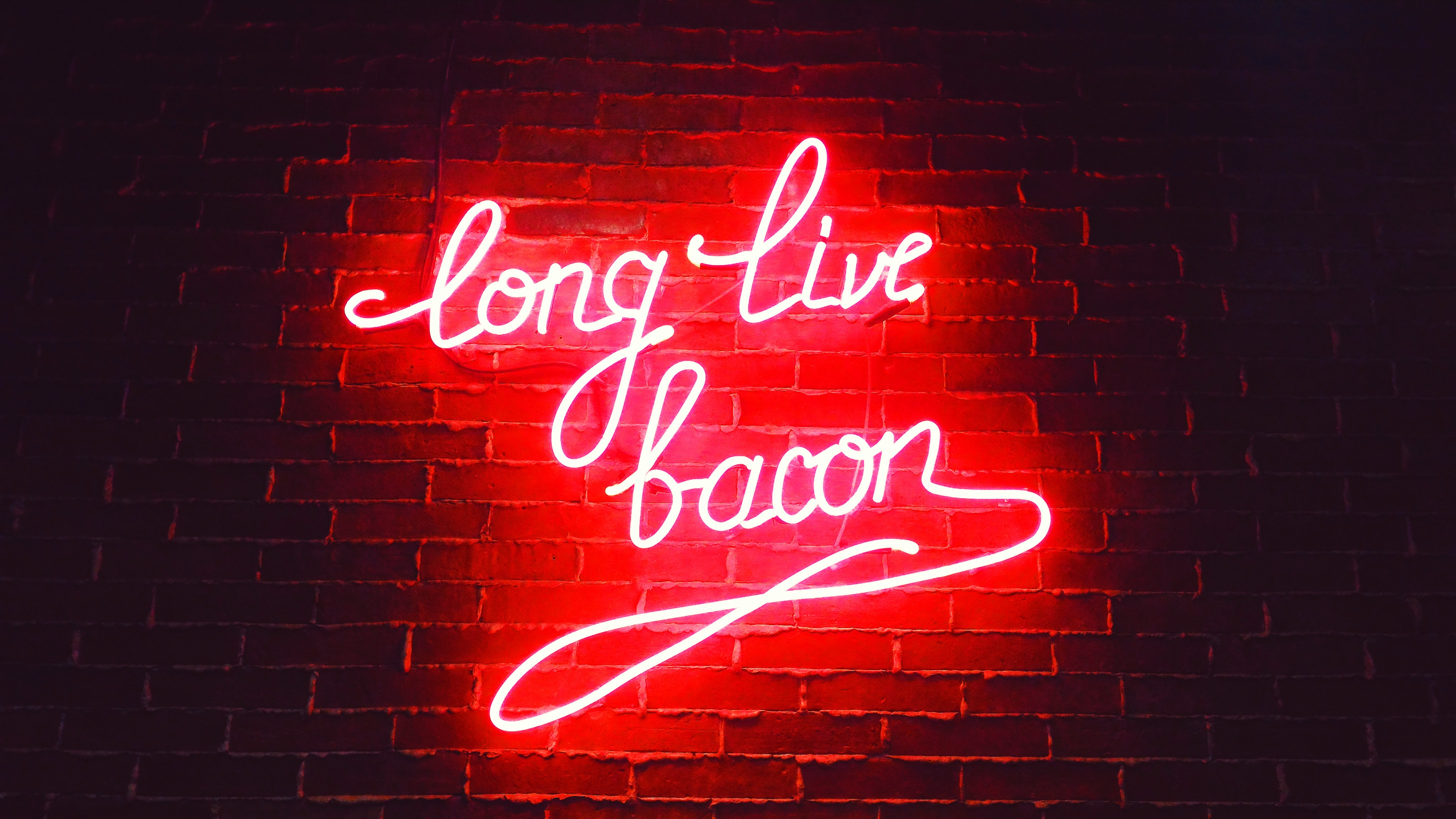 Long Live Bacon Neon Lights, HD Others, 4k Wallpapers
