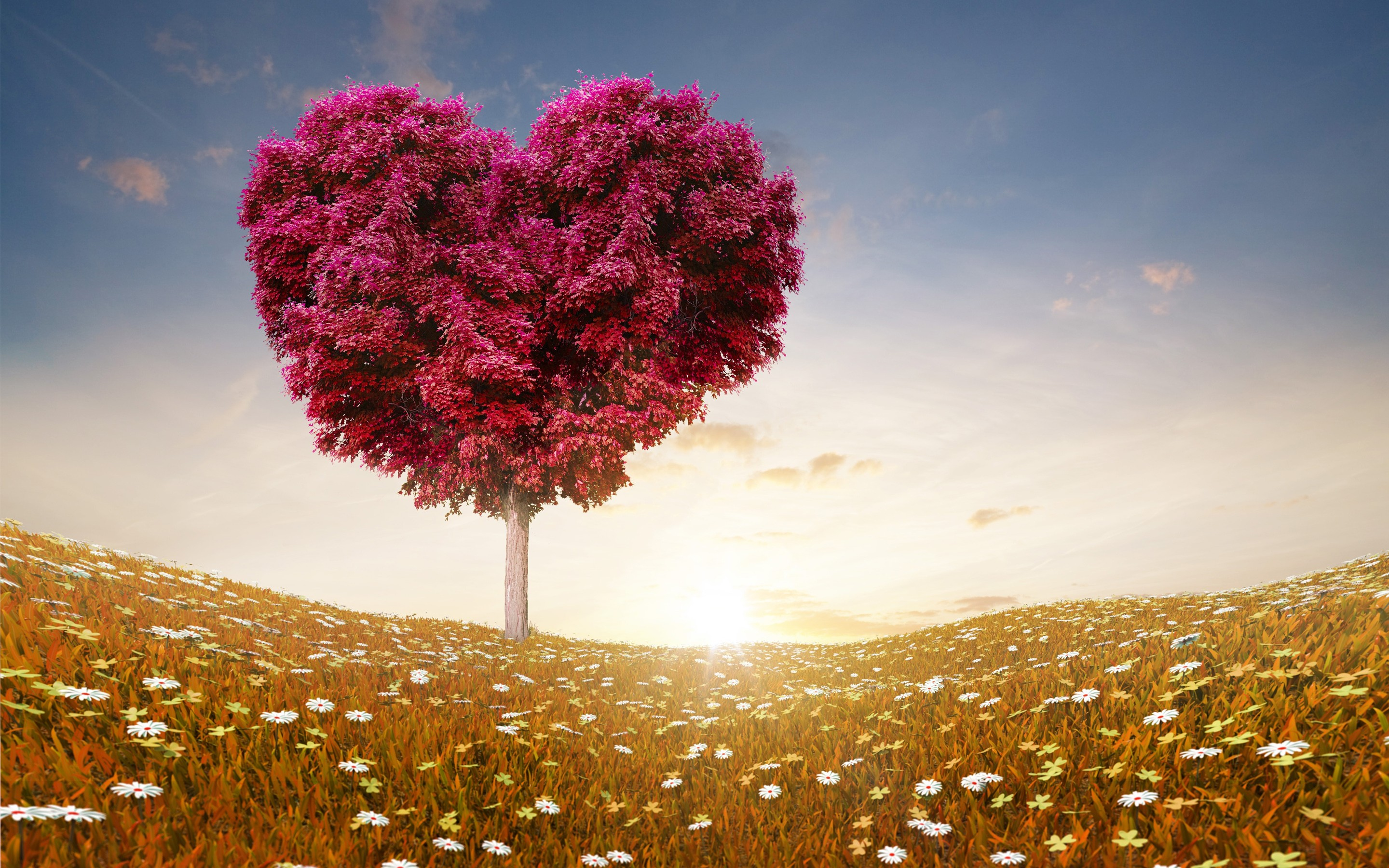 Love Tree Wallpapers : Love Heart Tree, HD Love, 4k Wallpapers, Images, Backgrounds, Photos and Pictures
