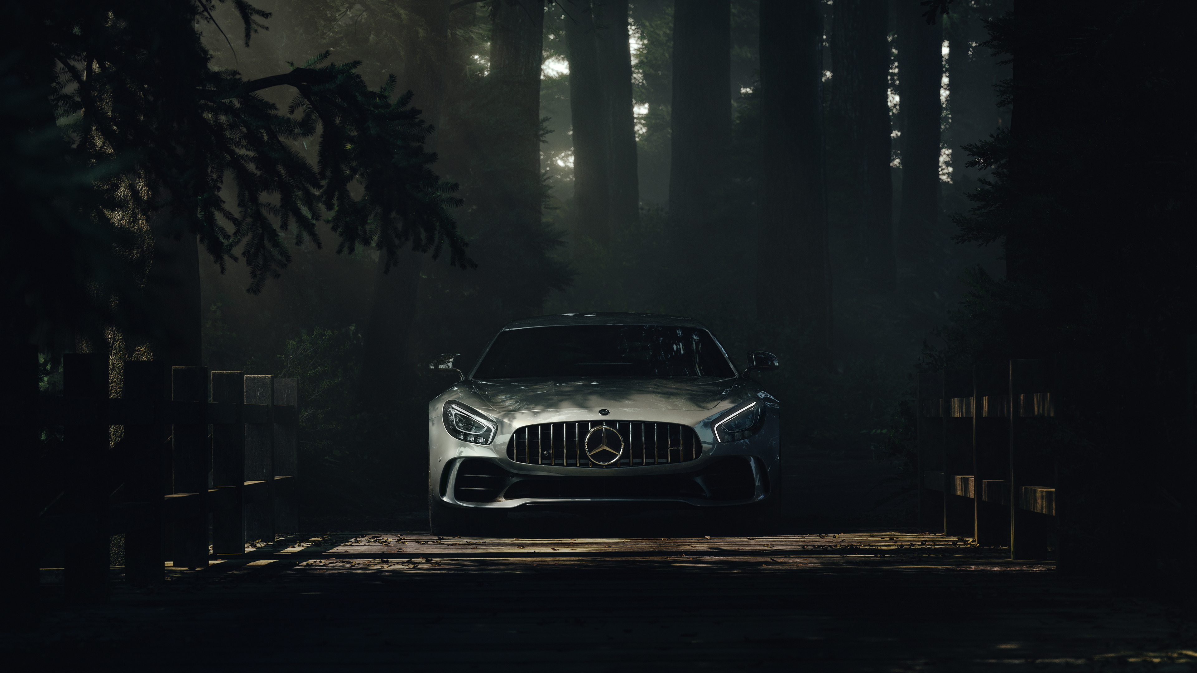 Mercedes Benz Amg Gt Deep Forest Hd Cars 4k Wallpapers