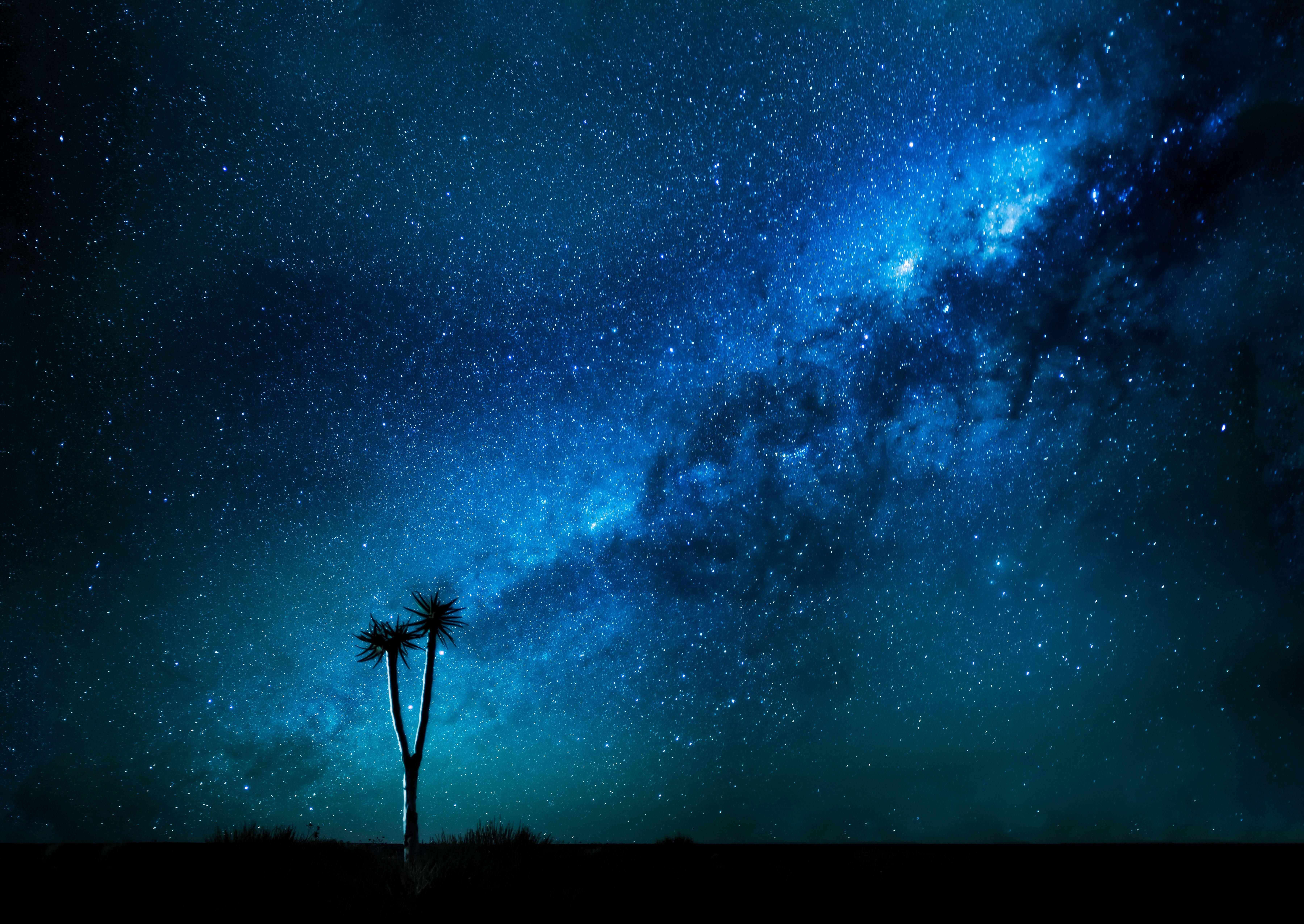 Milkyway 8k, HD Digital Universe, 4k Wallpapers, Images