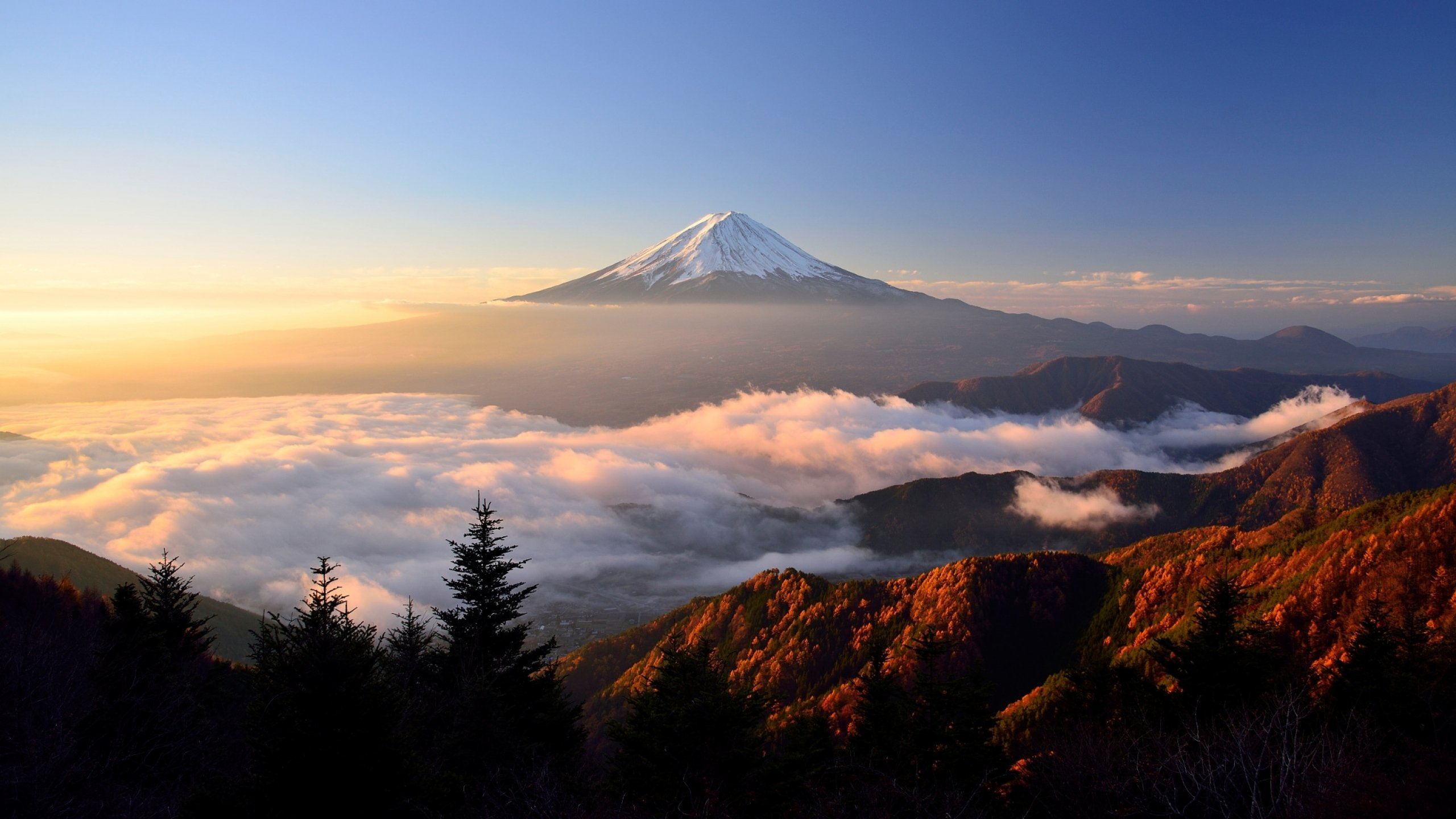Mount Fuji Hd Hd Nature 4k Wallpapers Images Backgrounds