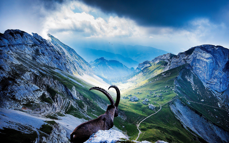Mount Pilatus Switzerland HD Desktop Wallpaper for K Ultra HD