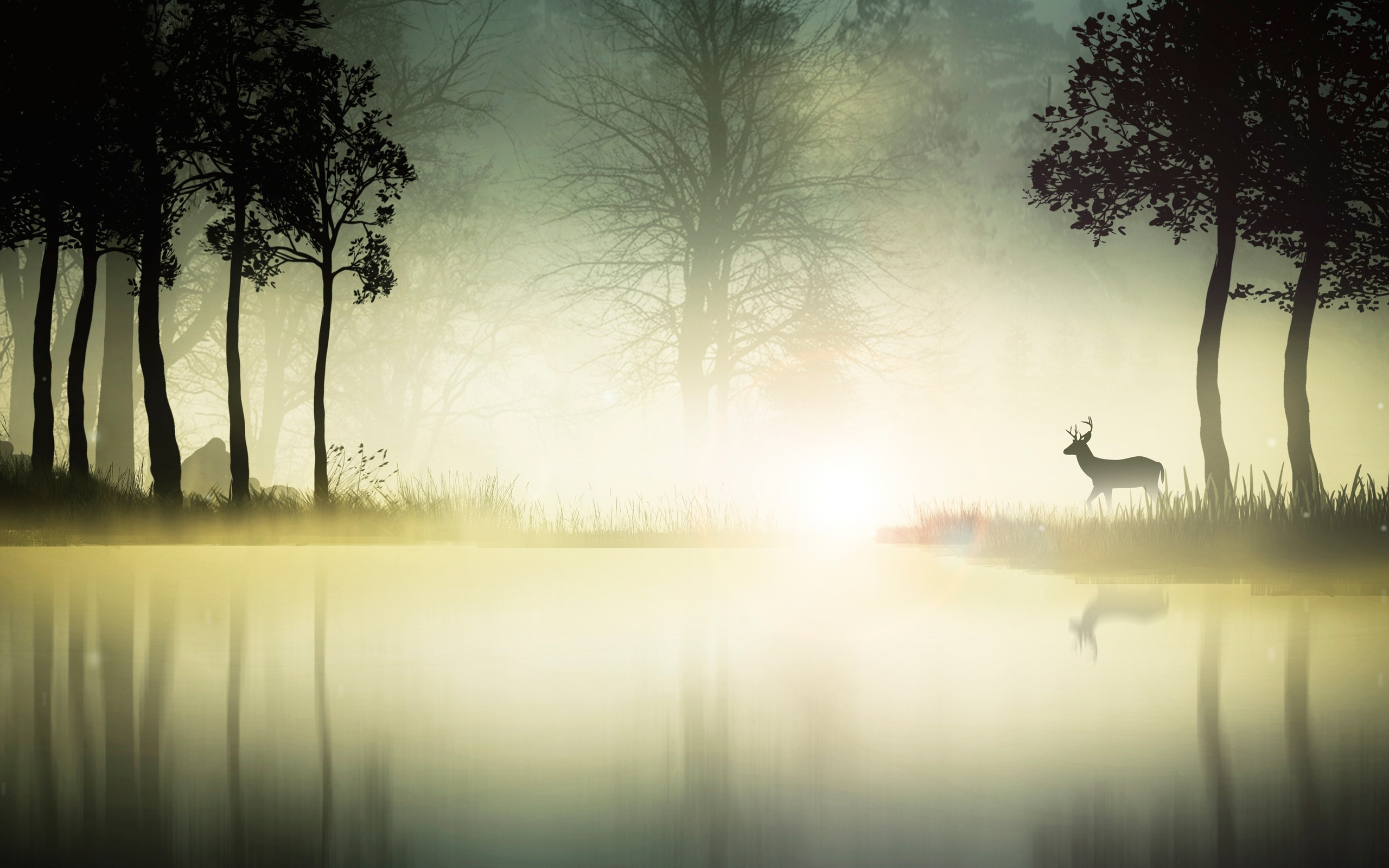 Cool Wallpaper Forest Deer - mystic-forest  Graphic_793939 .jpg