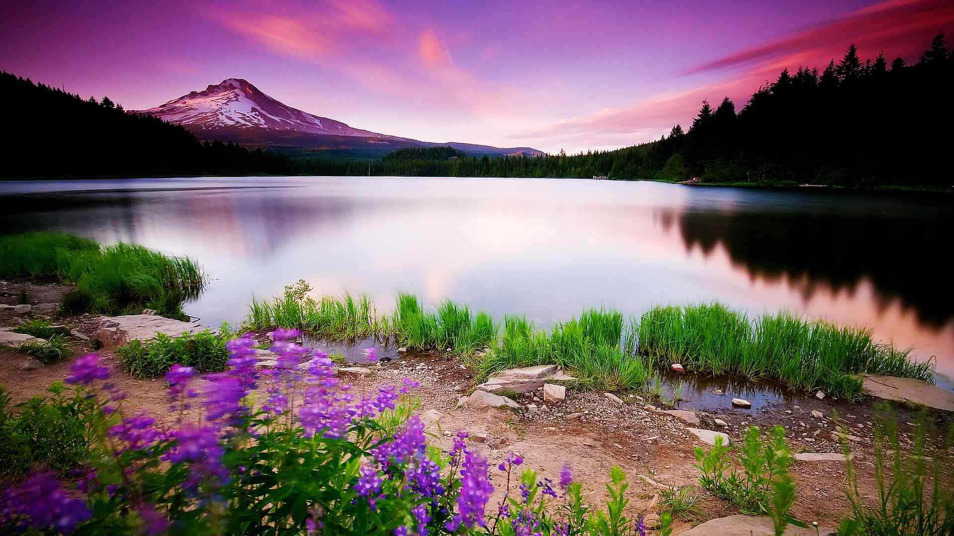 Nature Scenery, HD Nature, 4k Wallpapers, Images ...