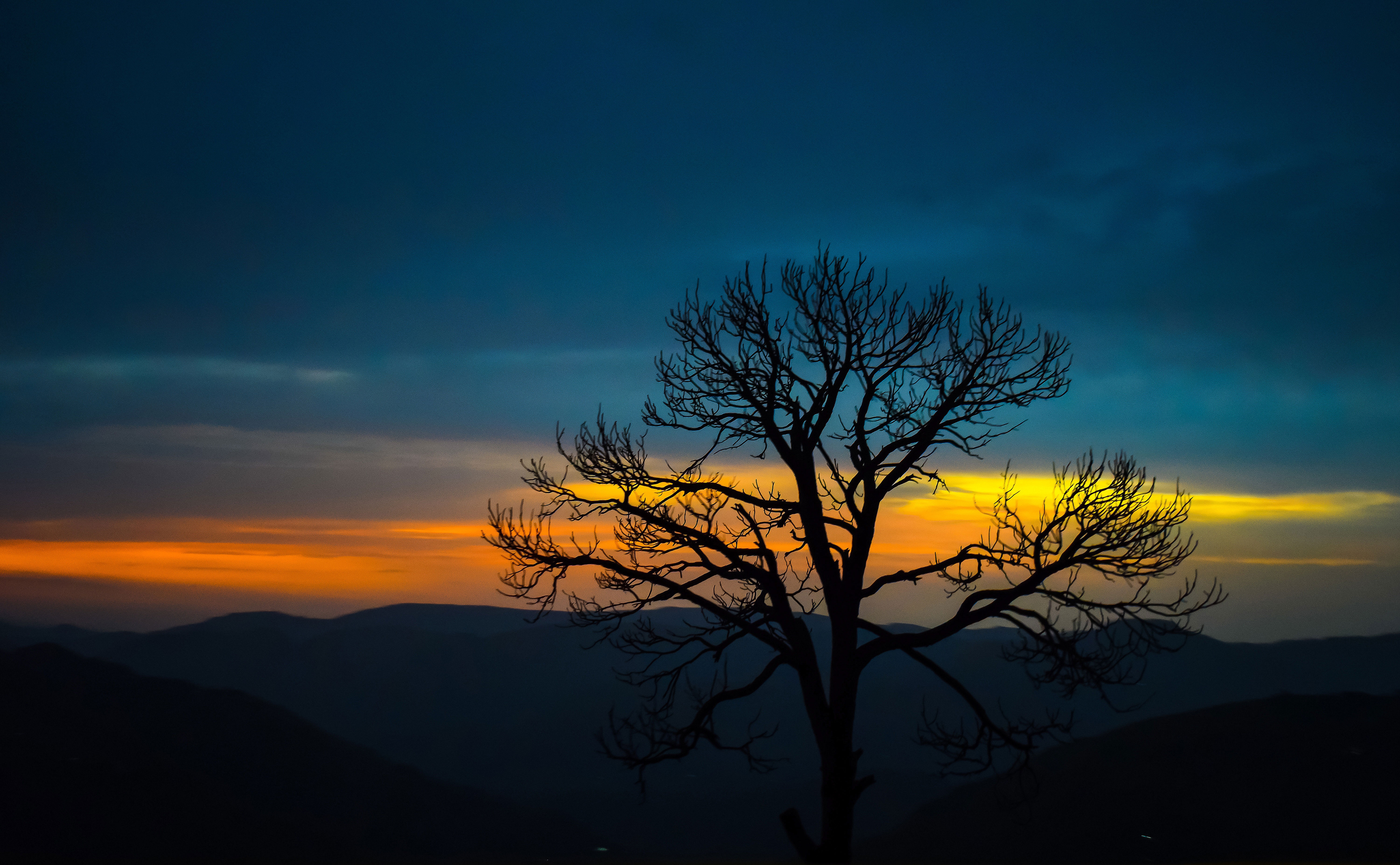 Nature Trees Mountains Hd 4k Sunset Forest Hd Nature 4k Wallpapers