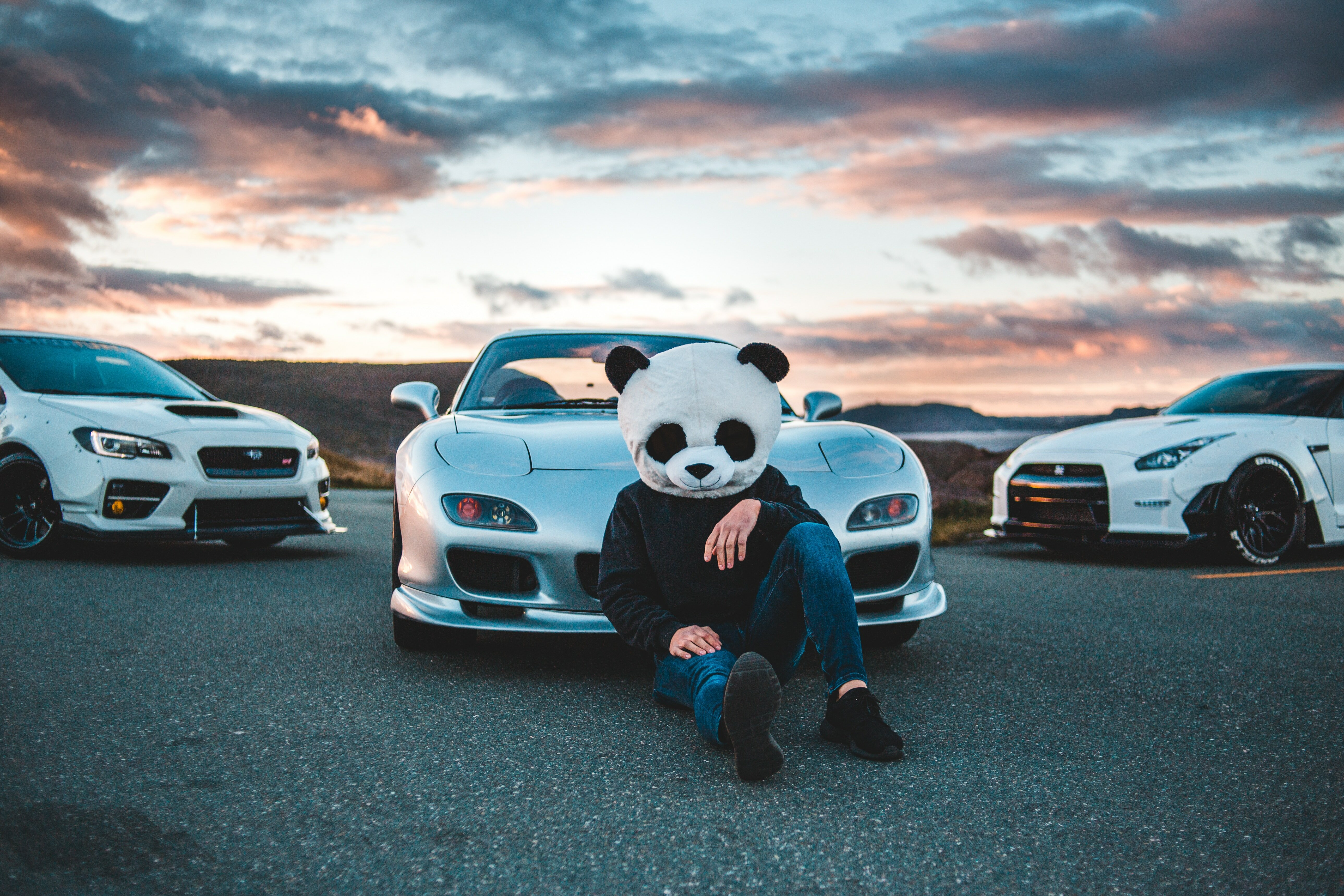 Panda Helmet Guy With Cars Hd Cars 4k Wallpapers Images