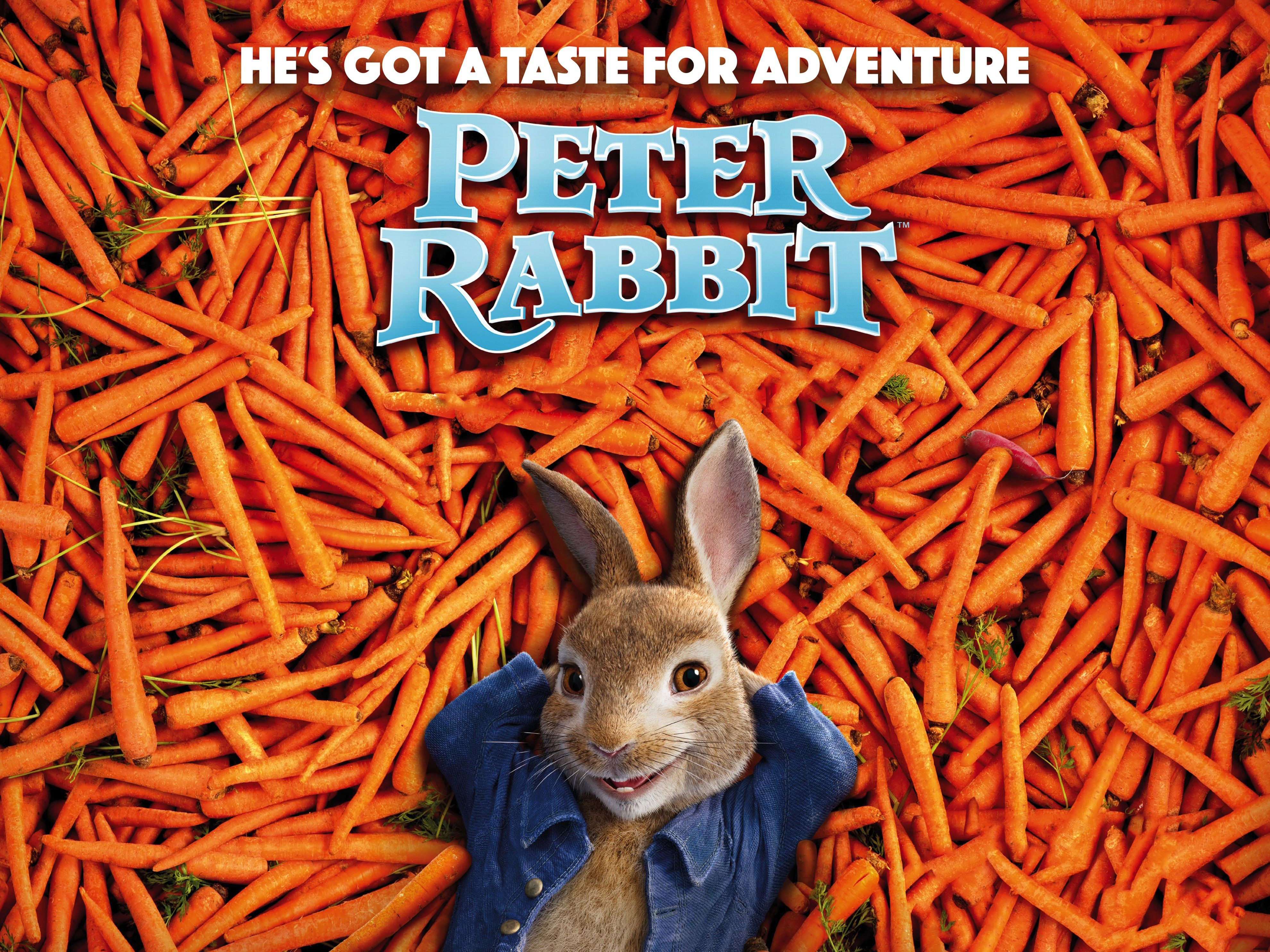 Peter rabbit 2018 hd movies 4k wallpapers images - Peter rabbit movie wallpaper ...