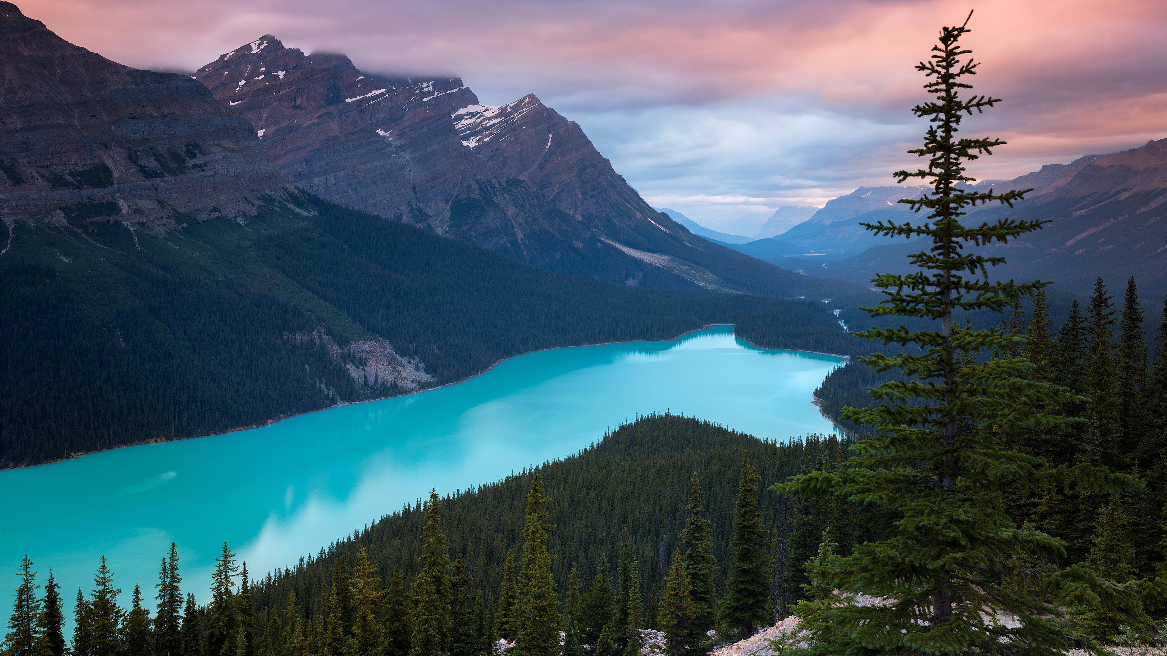 Peyto Lake Canada Mountains 4k, HD Nature, 4k Wallpapers ...