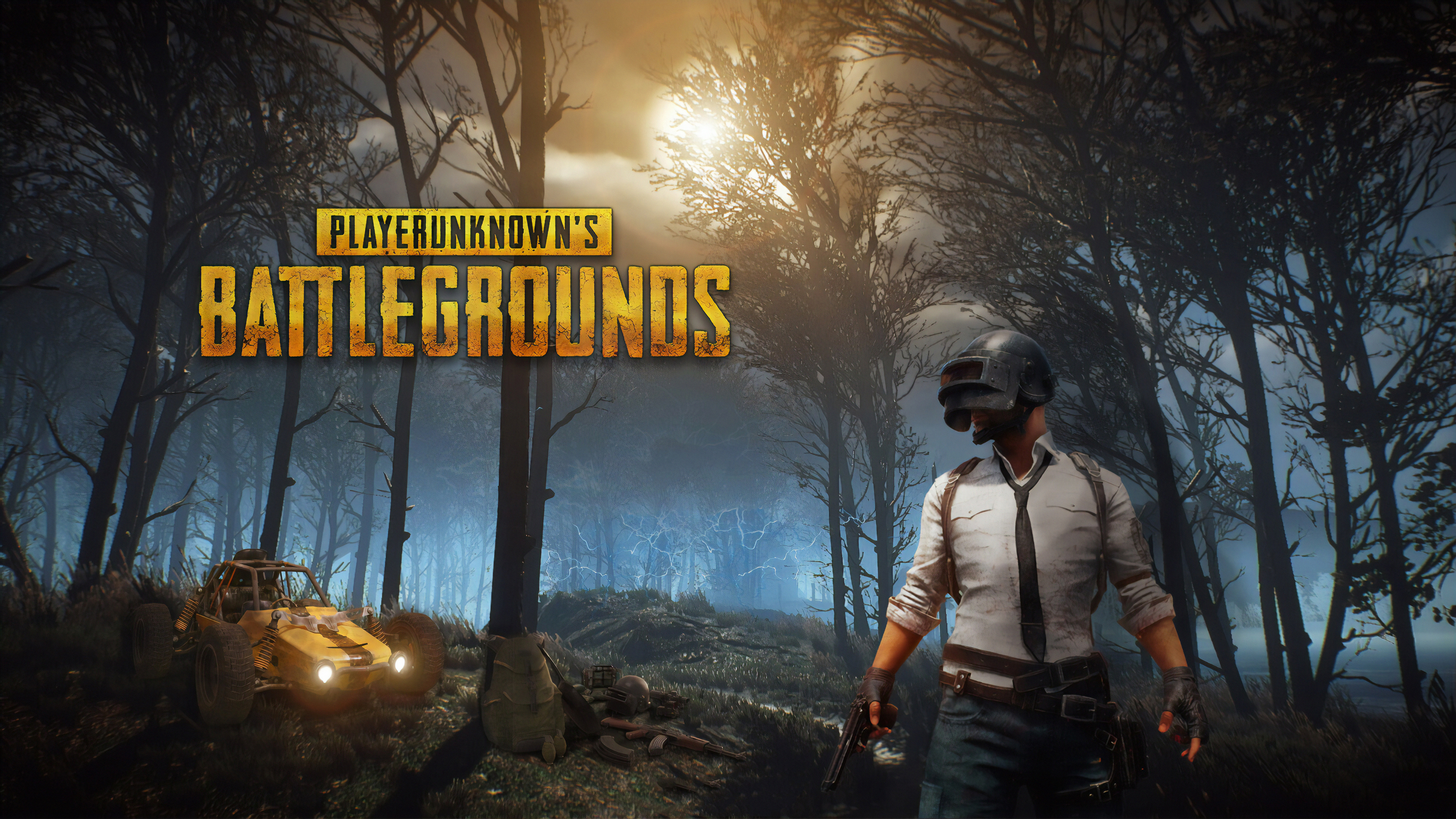 Pubg 2019 New 4k, HD Games, 4k Wallpapers, Images ...