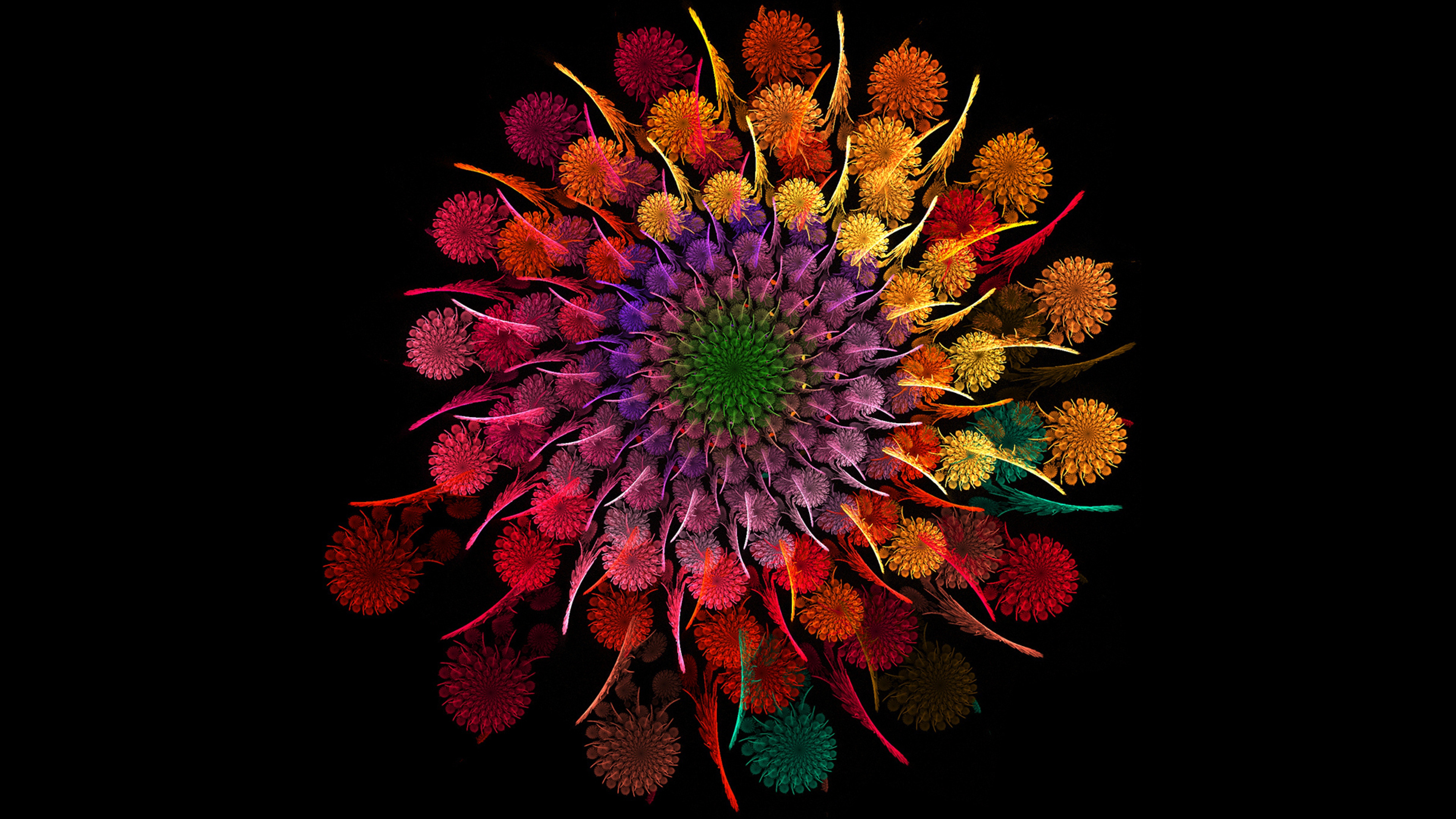 rainbow flower, hd flowers, 4k wallpapers, images, backgrounds