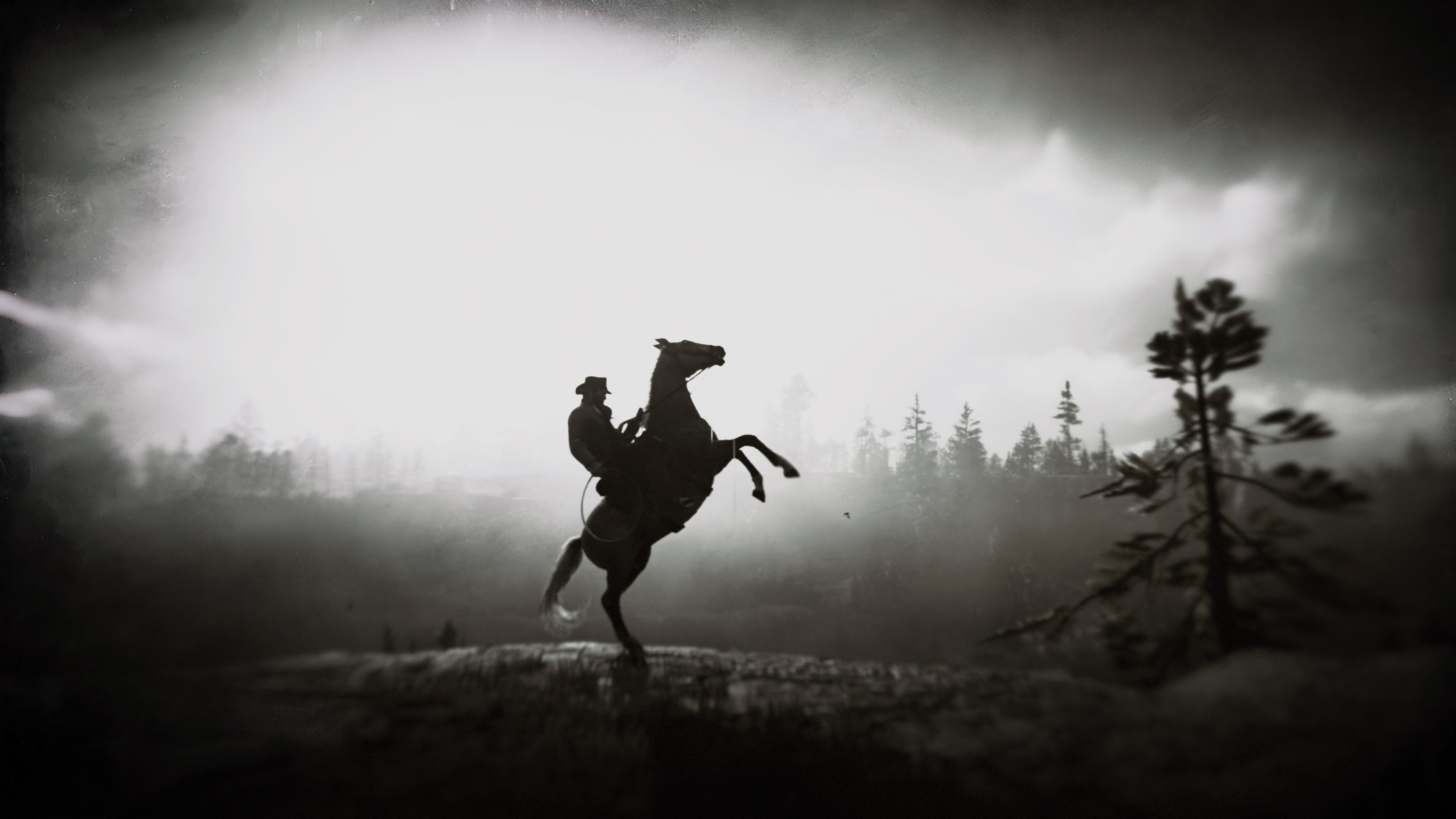 red dead redemption 2 phone wallpaper