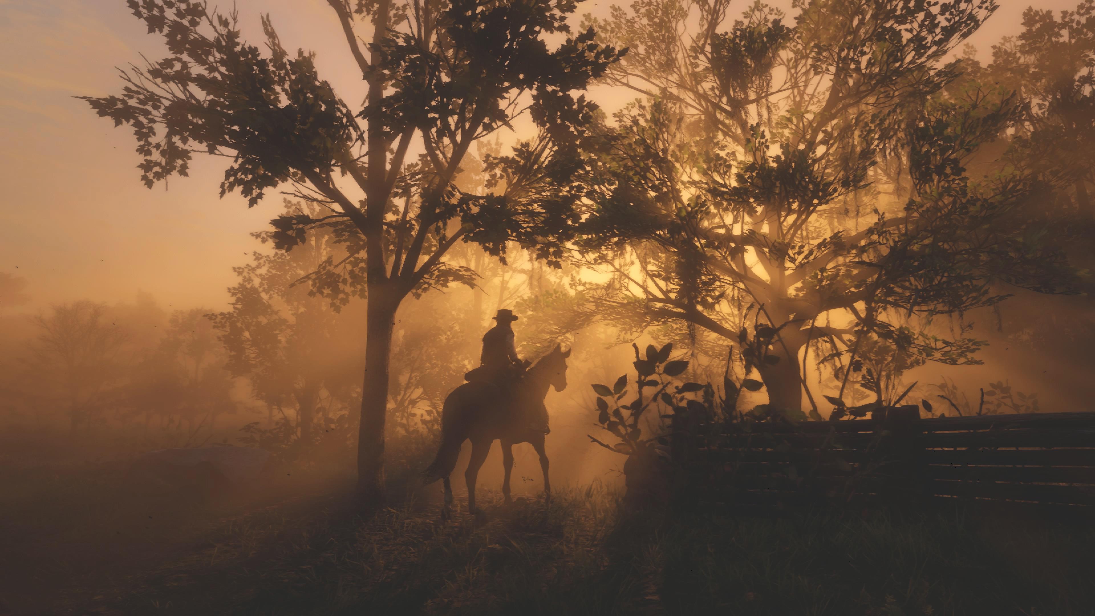 Red Dead Redemption 4k 2, HD Games, 4k Wallpapers, Images ...