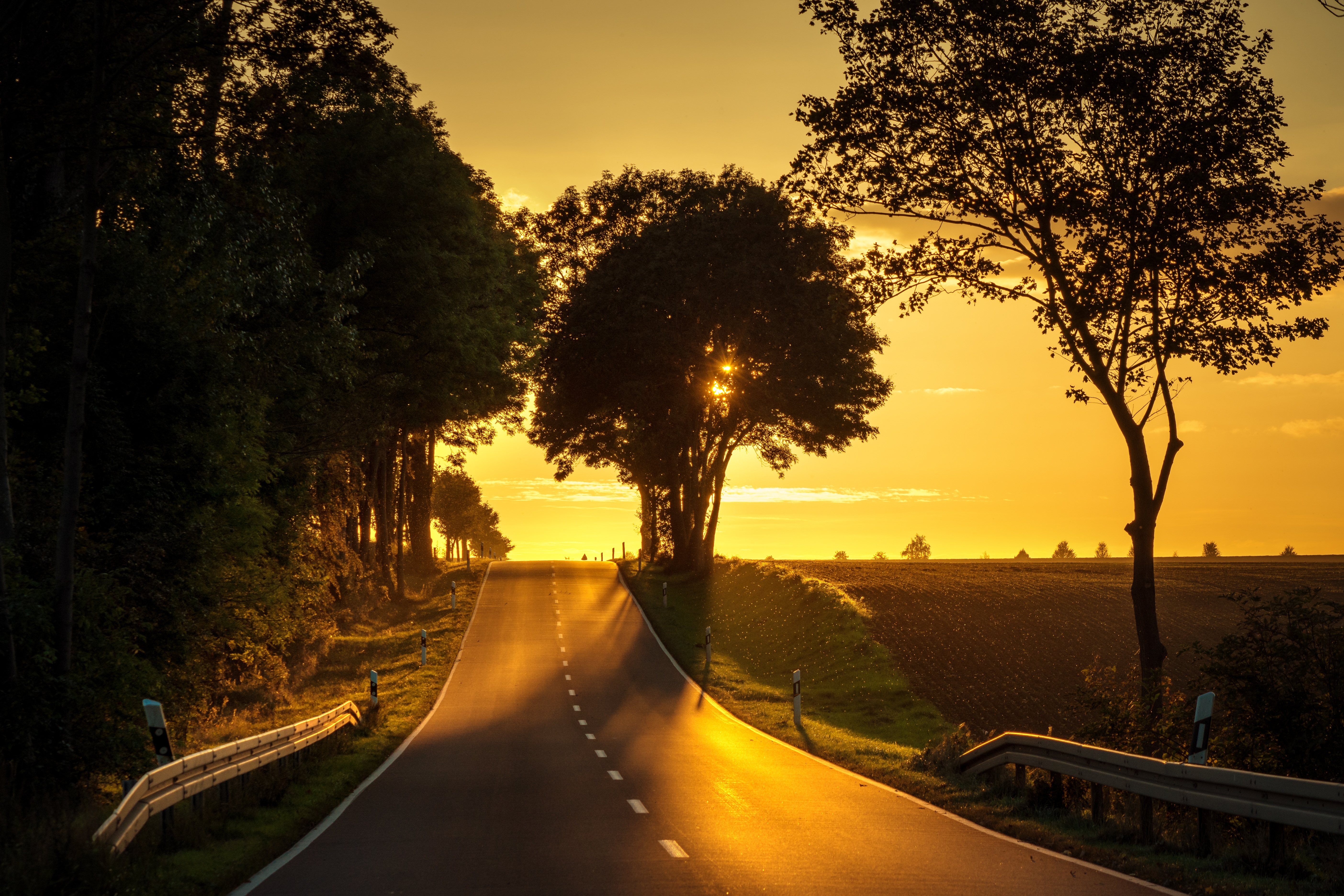 Road sunset back light 5k hd nature 4k wallpapers images backgrounds photos and pictures - Background images 4k hd ...