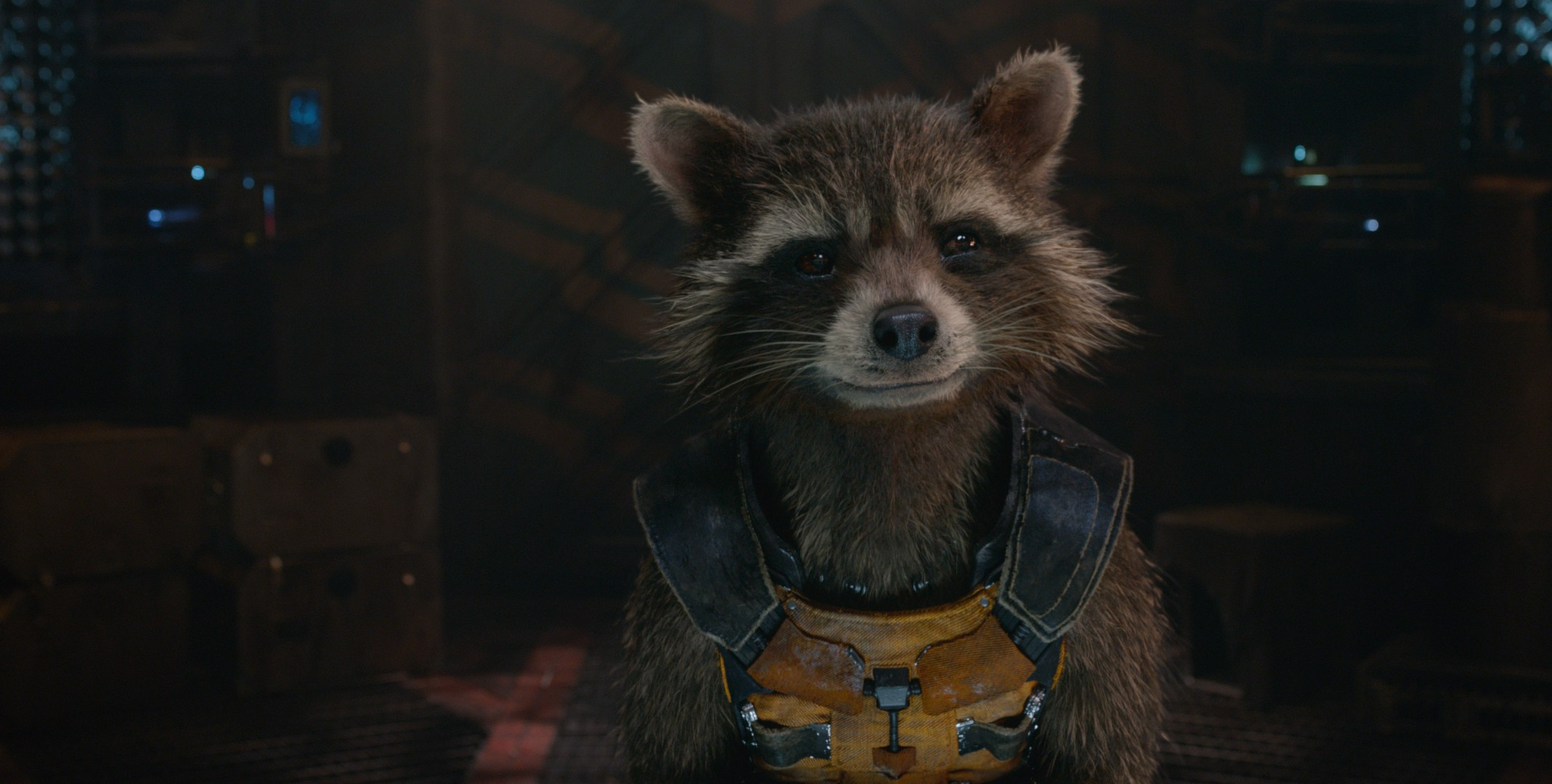 Rocket raccoon guardians of the galaxy hd movies 4k - Rocket raccoon phone wallpaper ...