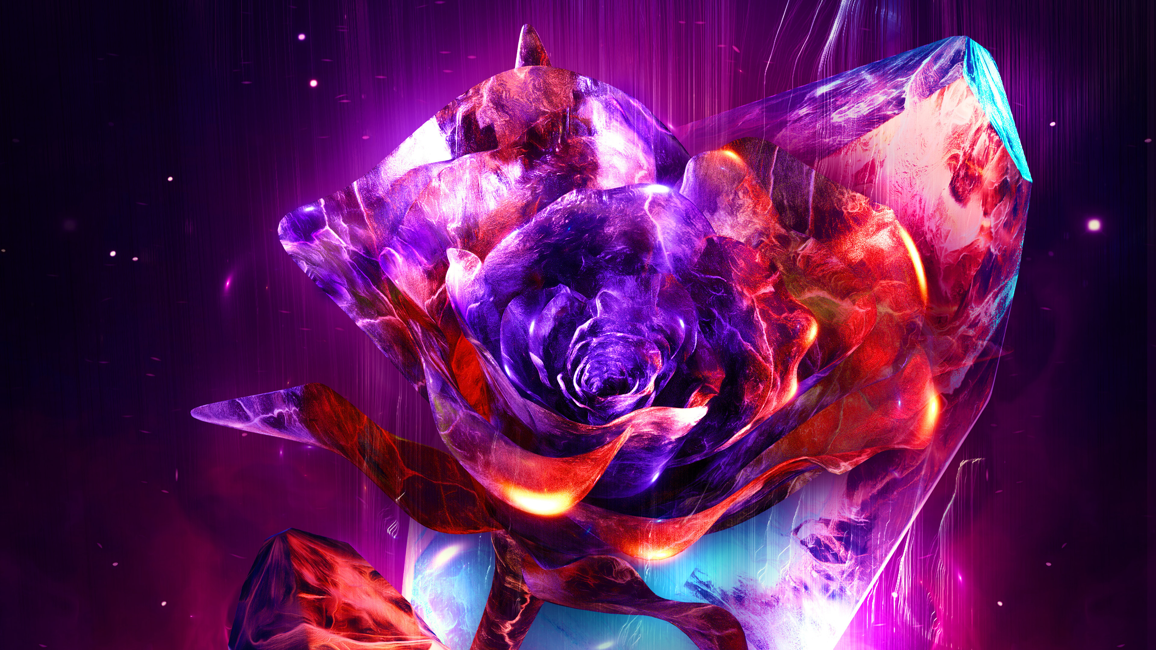 1366x768 Rose Abstract 4k 1366x768 Resolution HD 4k