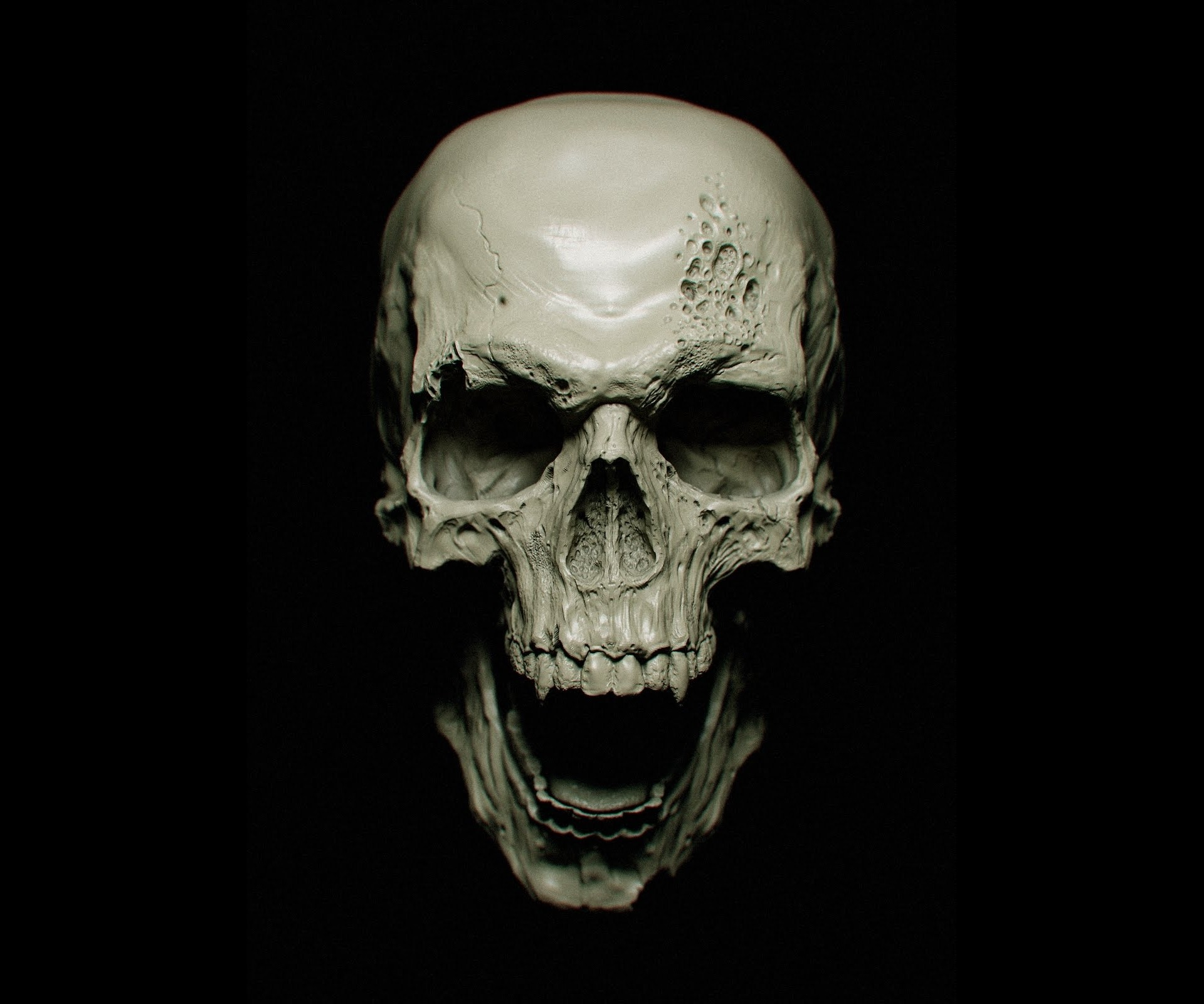 Skull, HD Artist, 4k Wallpapers, Images, Backgrounds ...