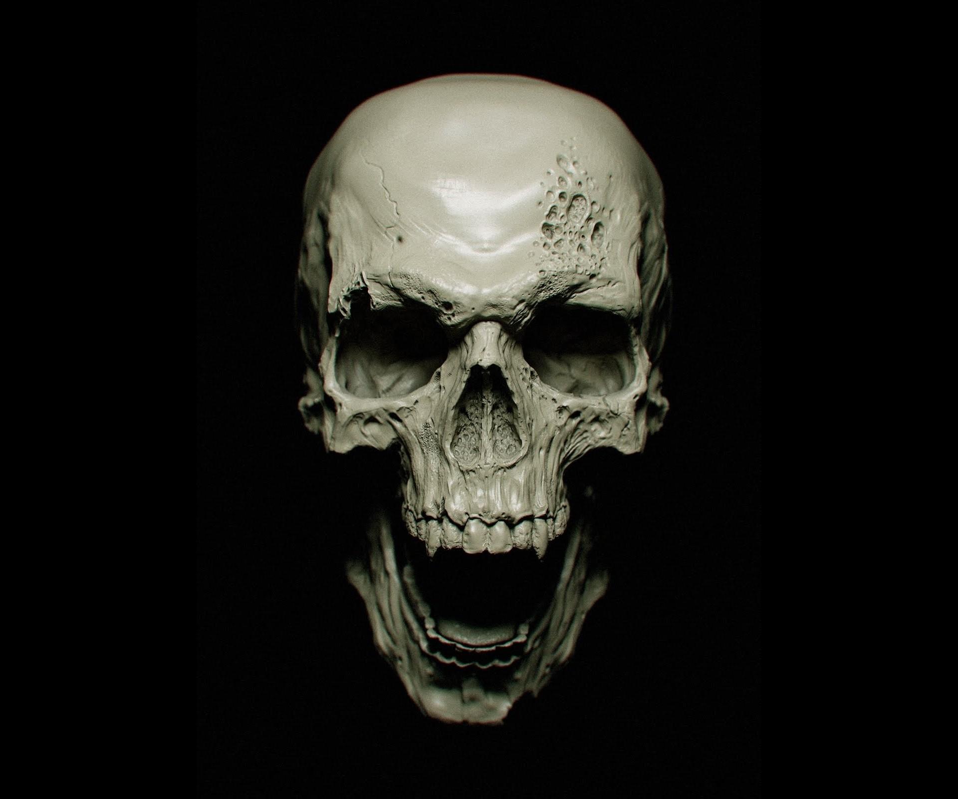Skull HD Artist 4k Wallpapers Backgrounds