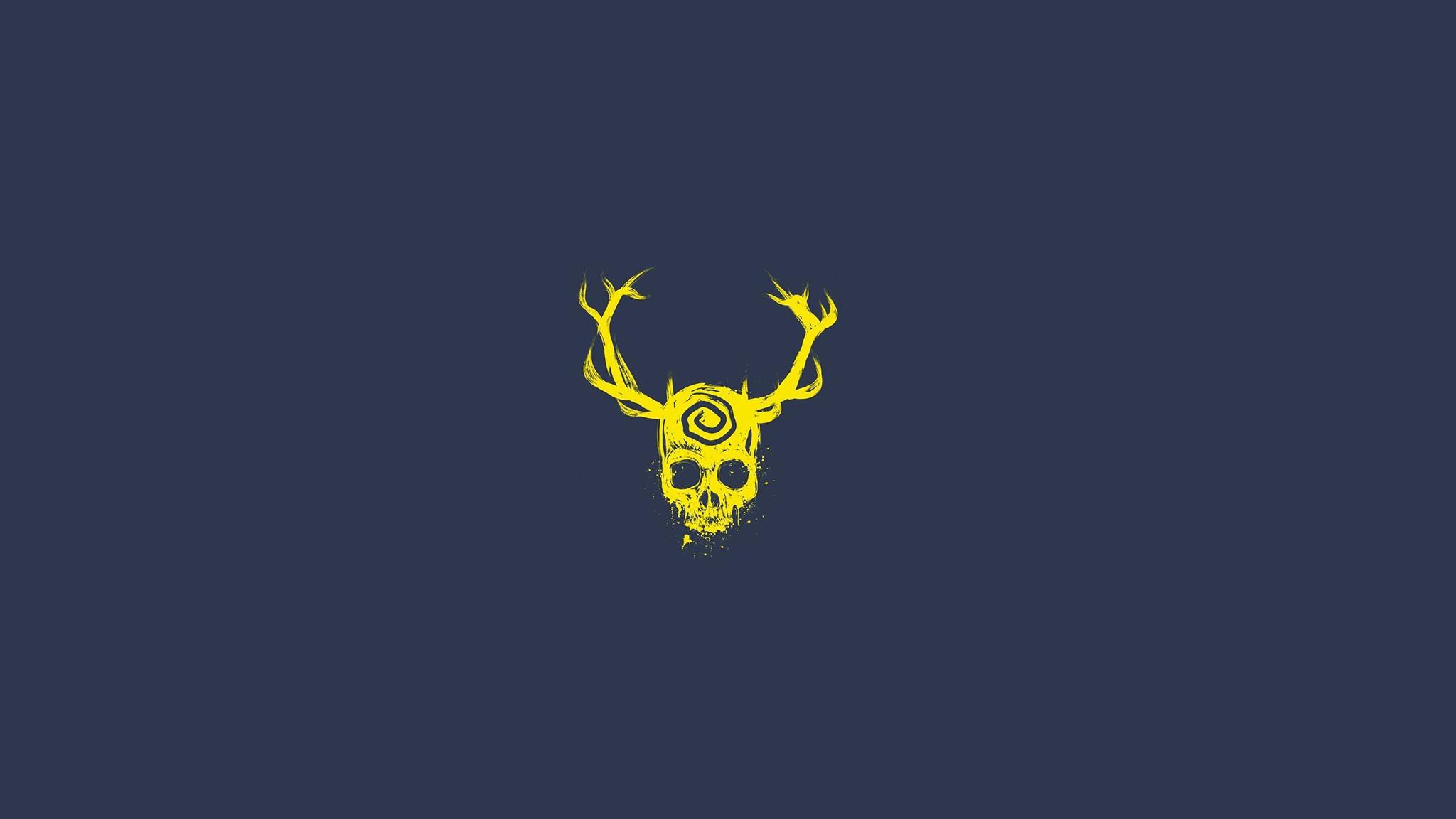 Skull minimalist hd artist 4k wallpapers images for Immagini minimal