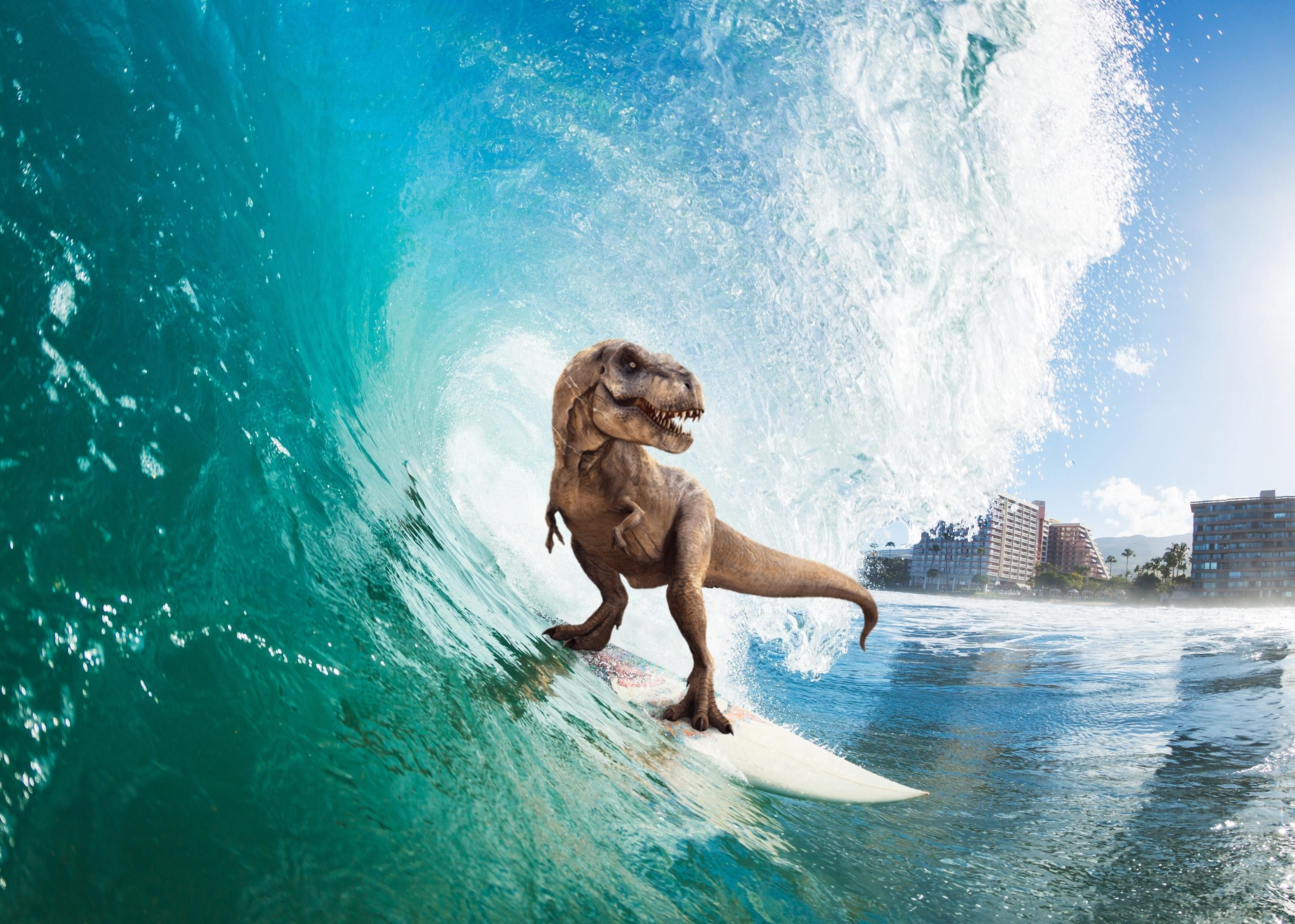 Surfing T Rex Hd Others 4k Wallpapers Images Backgrounds